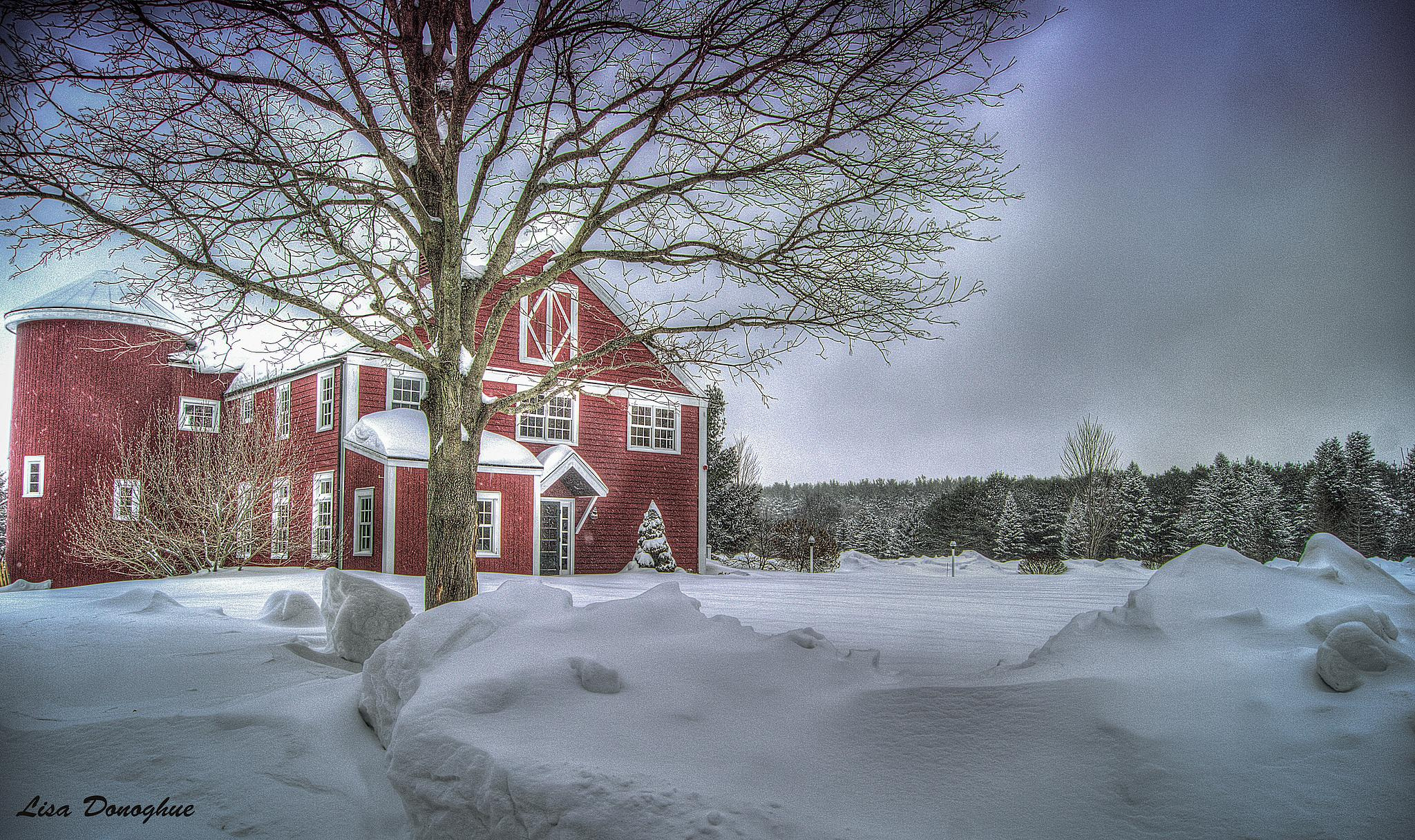 Photo in Landscape #new england #winter #snow