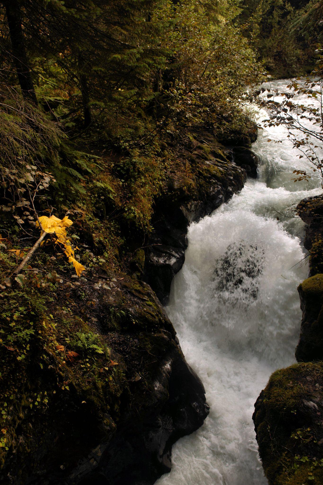 Winner Creek Gulch by linda.scates1