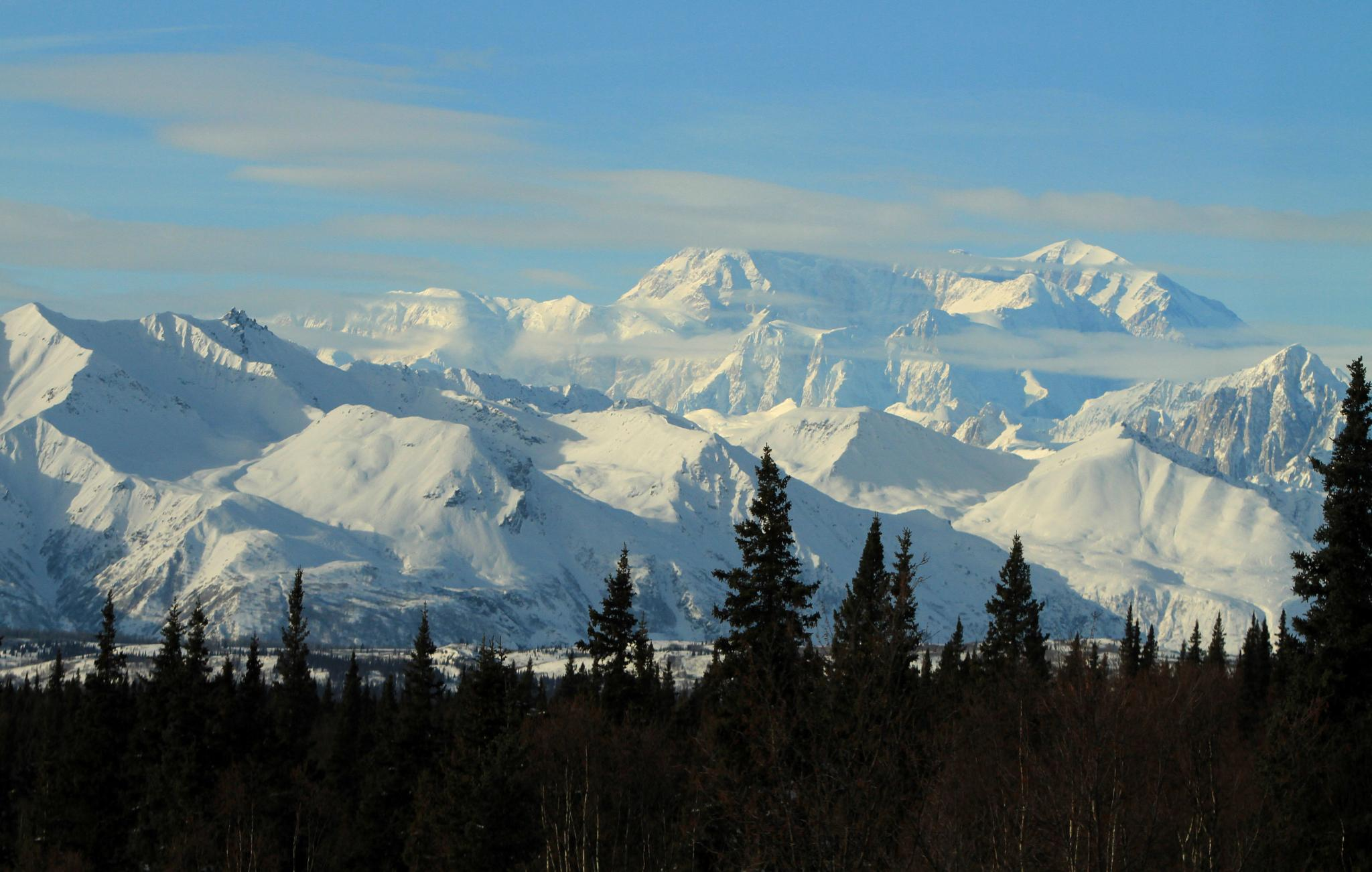 """Denali, """"the Great One"""" by linda.scates1"""