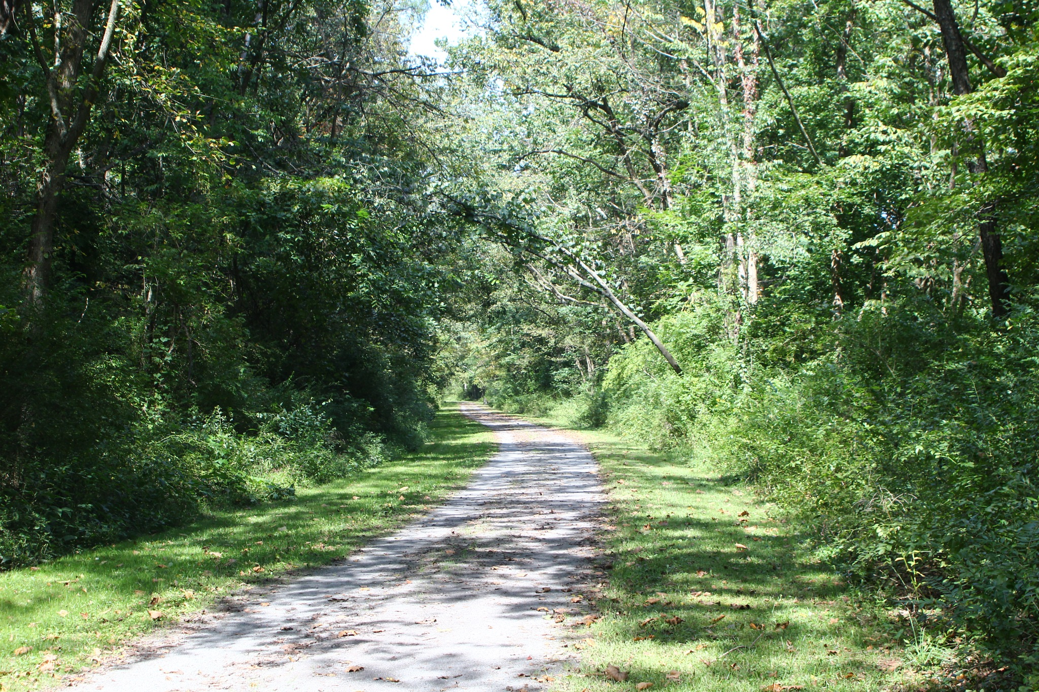 hiking trail by Jim
