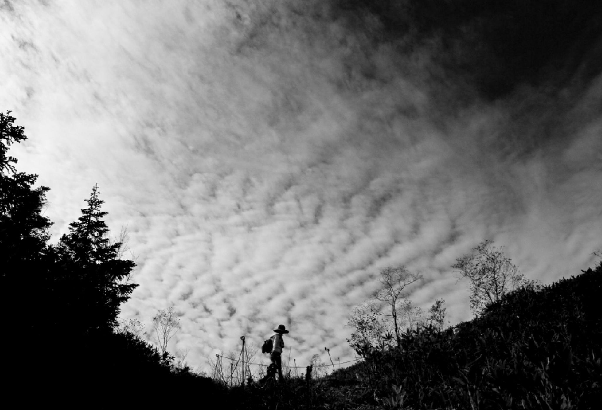 Plateau of autumn sky by photoeene
