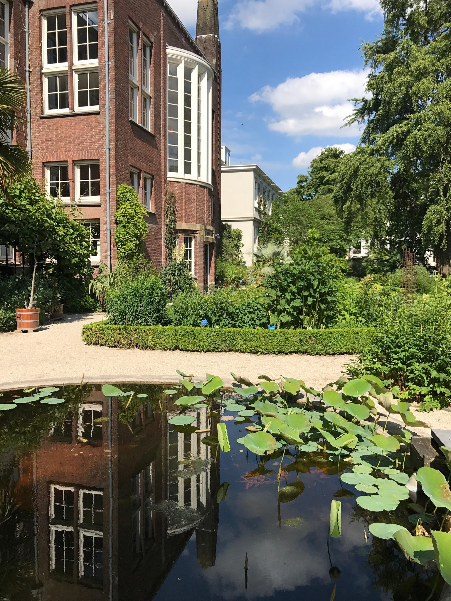 Hortus Botanicus, Amsterdam, Netherlands by Meggie Knoblock