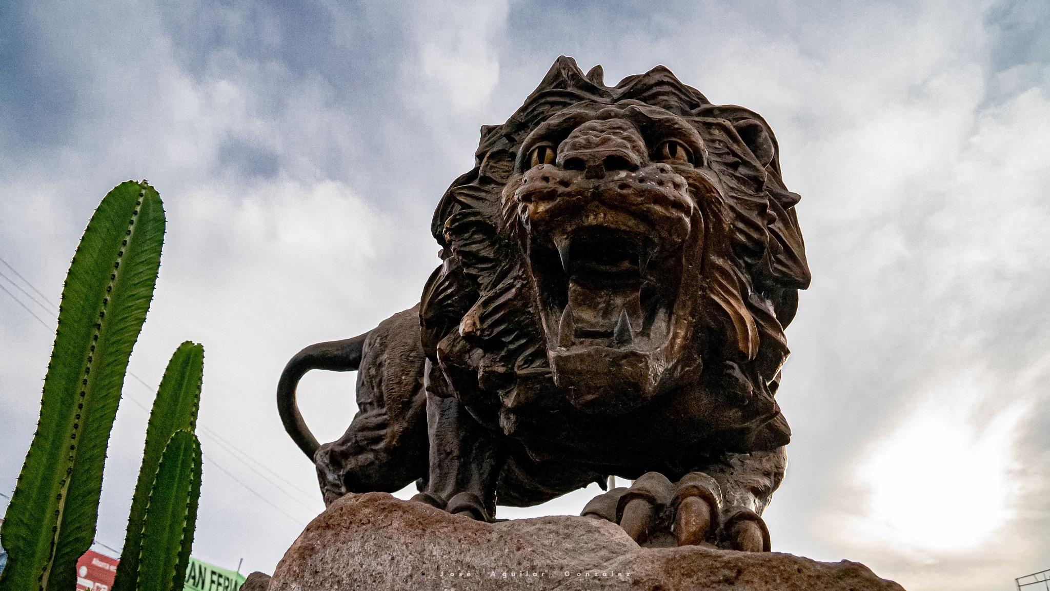 Leon de Tacna by Jose Aguilar González