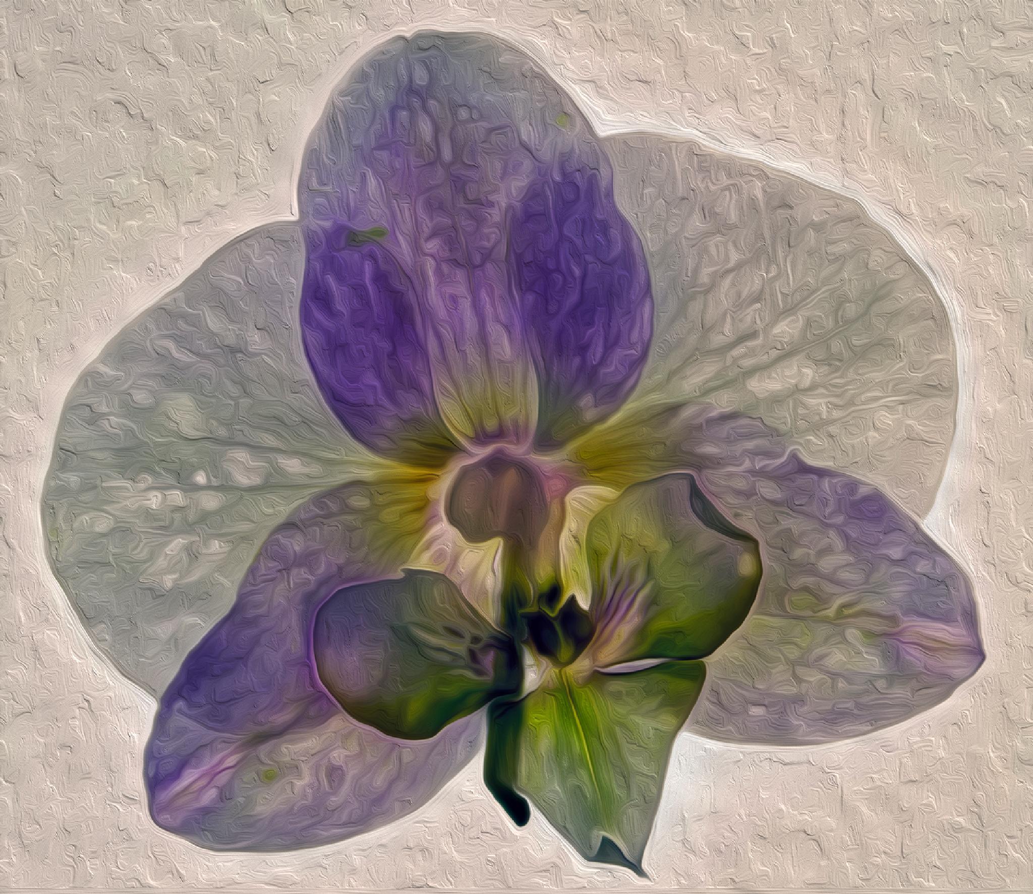 dried orchid by Birthe Kirk Gawinski