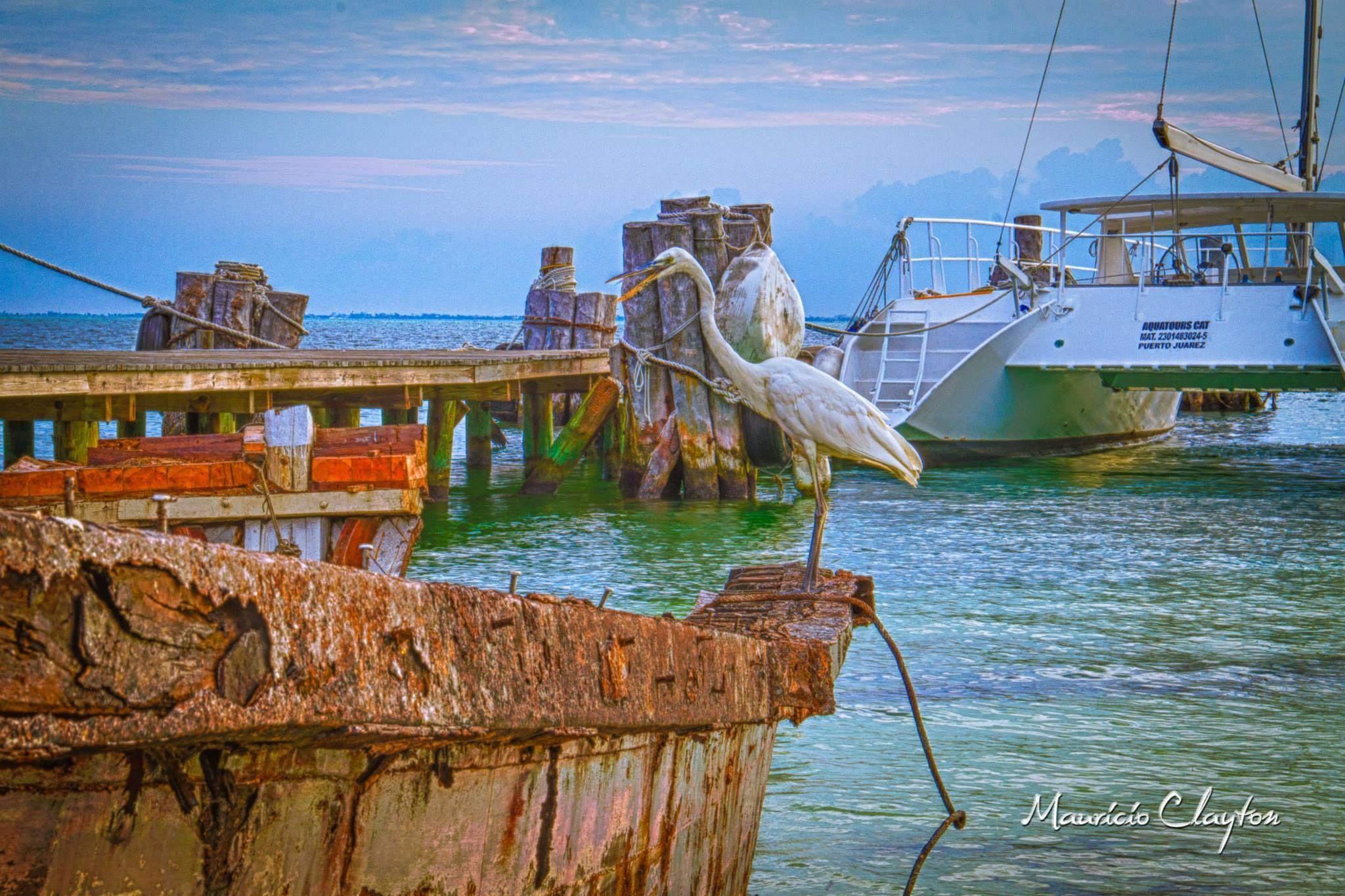 rusty boat and crane by mauricio.clayton