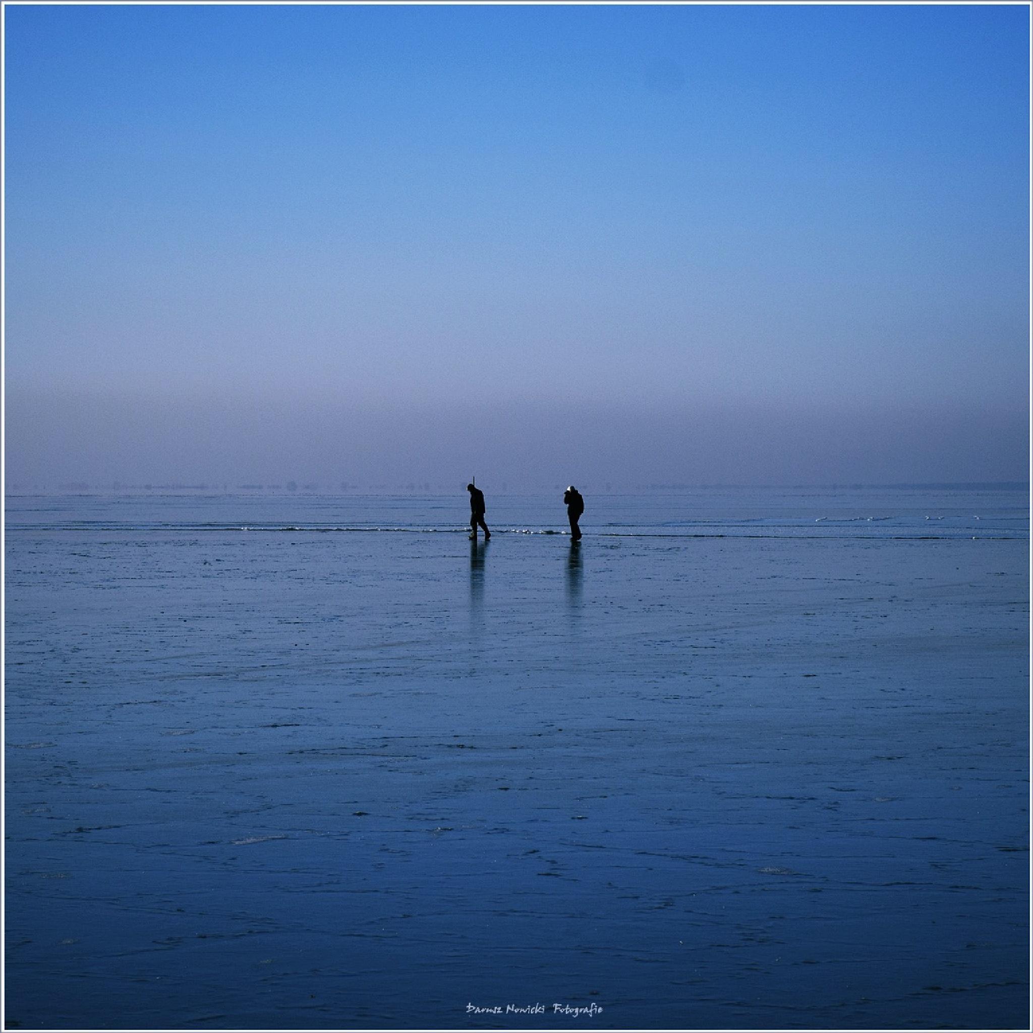BIG BLUE by darnowic