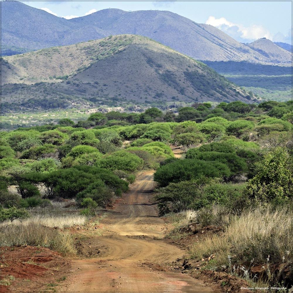 Kenya by darnowic