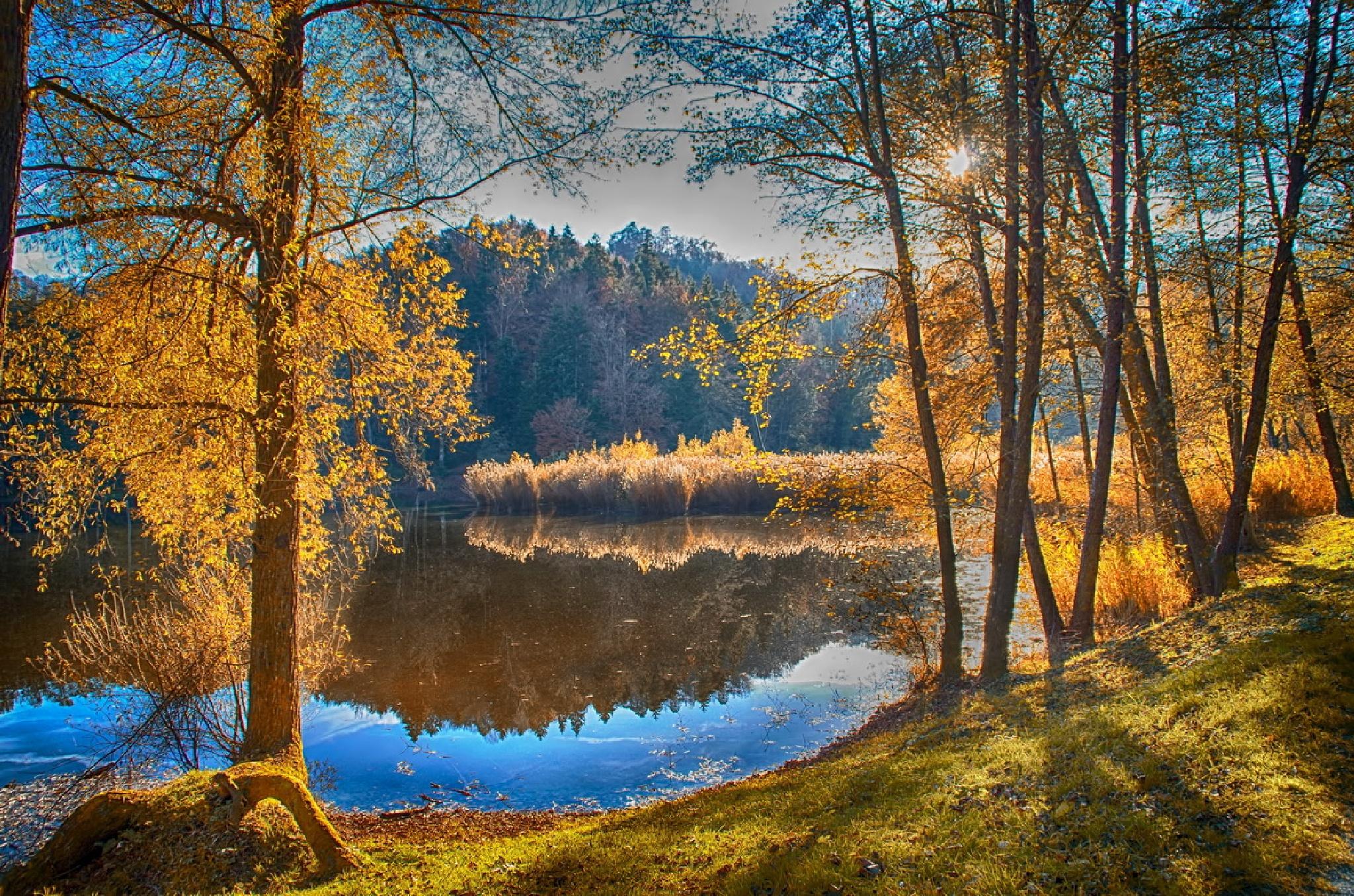 Sun shadows by Irena Trkulja