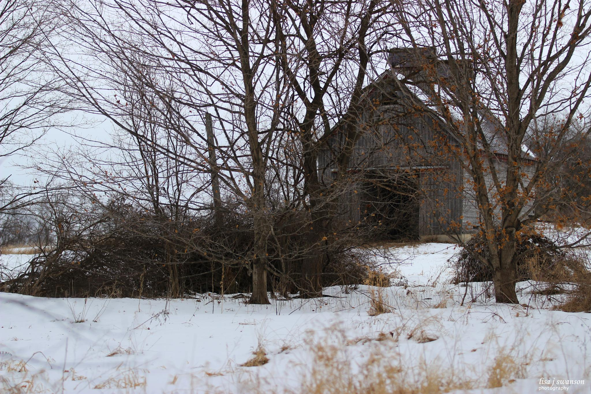 Just an old barn by lisa.meyersswanson