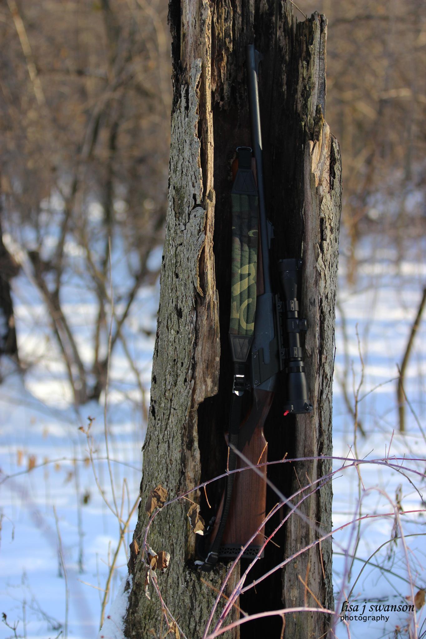Tree trunk gun by lisa.meyersswanson