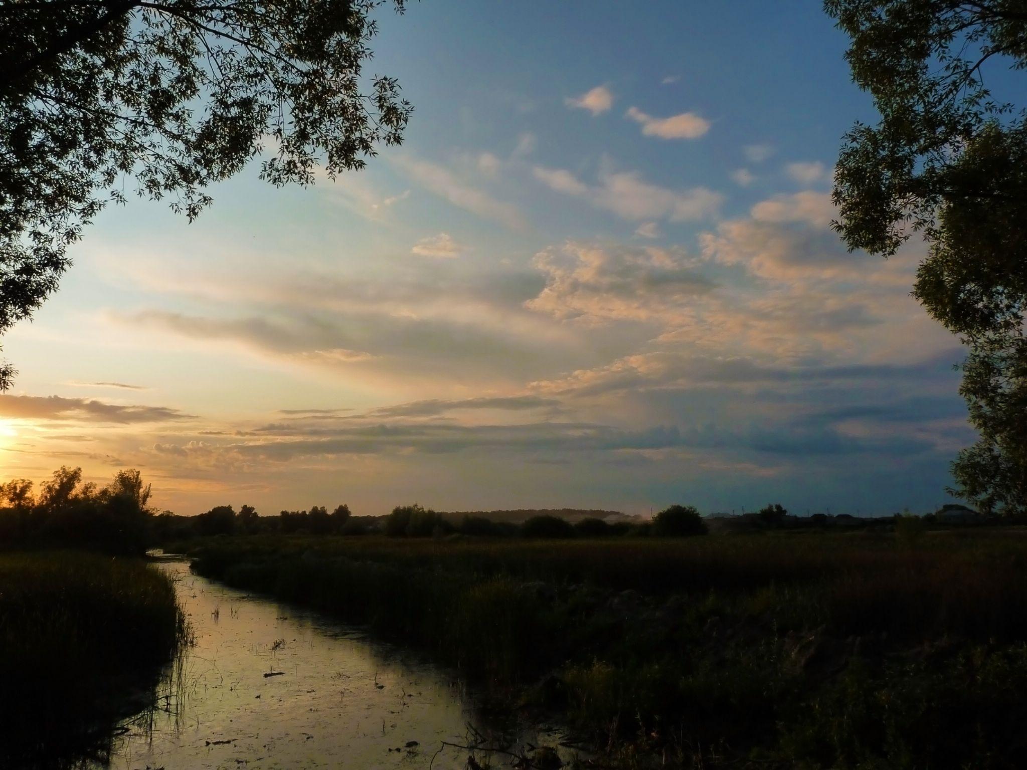Bogana River by Shilov