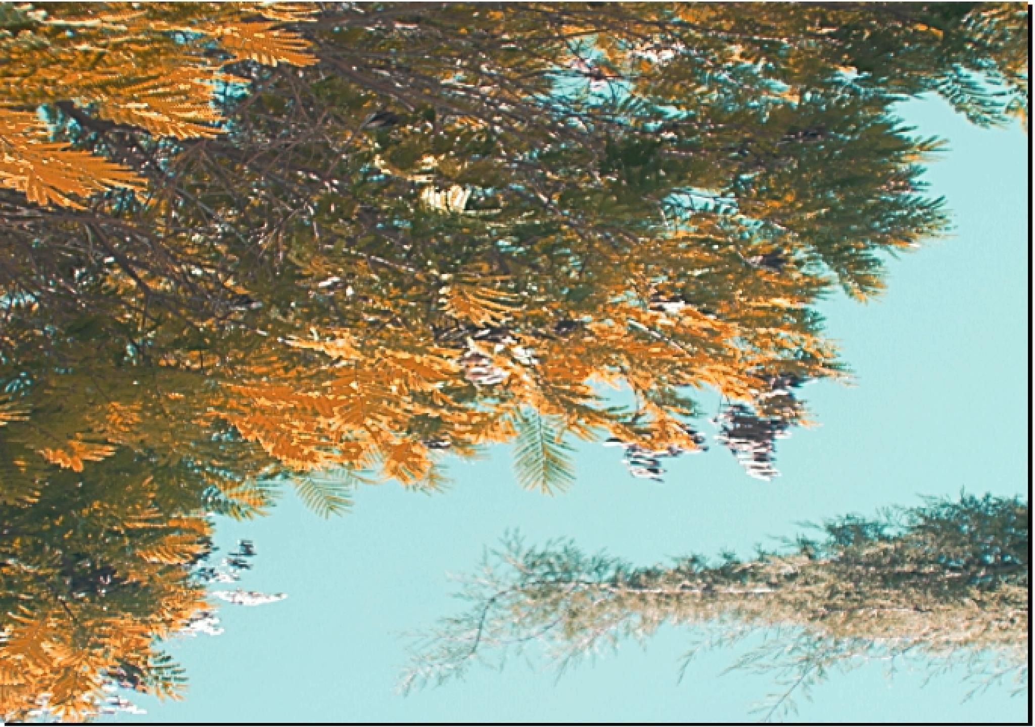 an island or the sky ..? by Eliya.M. Moses