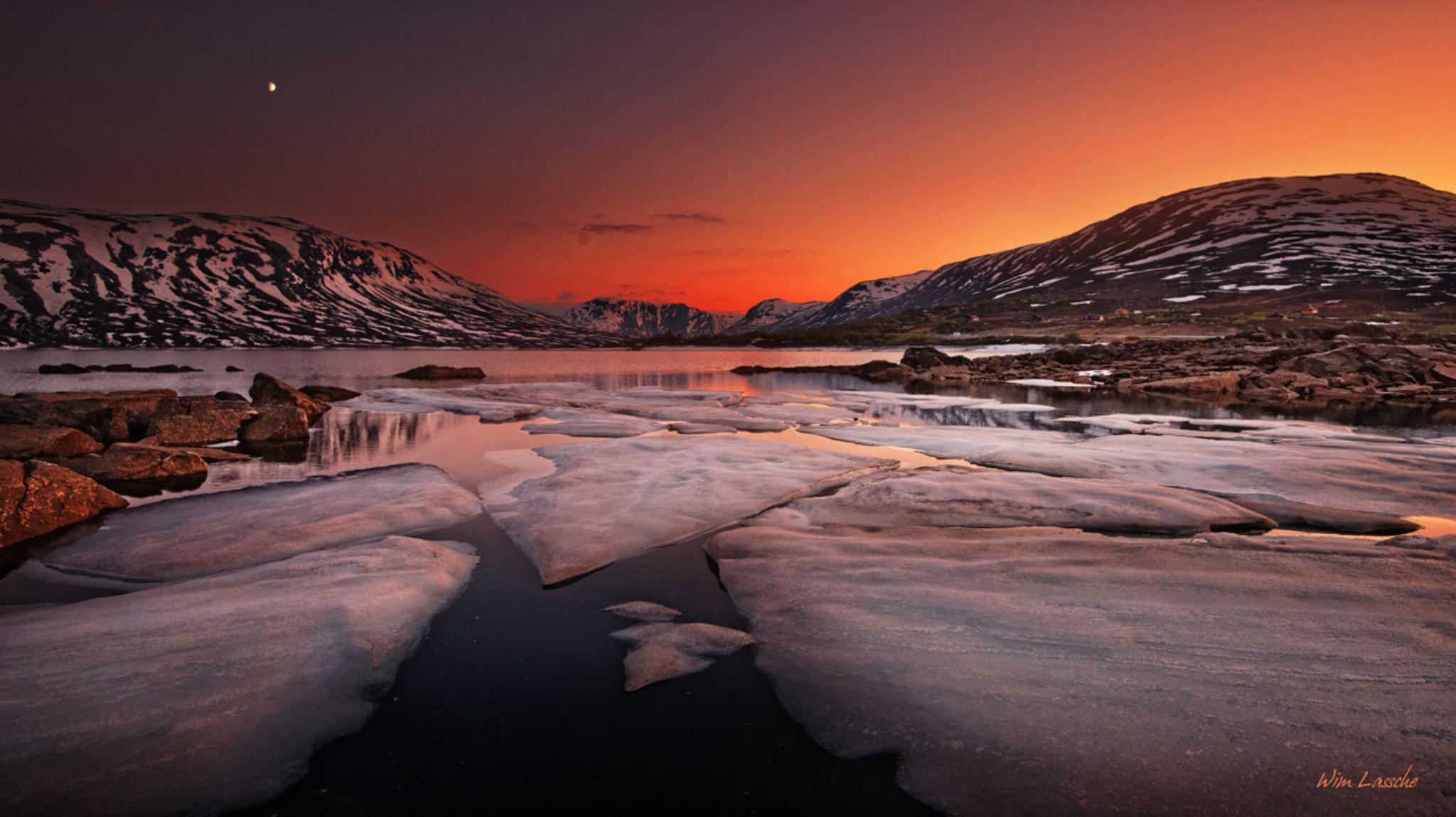 Midsummer Ice by Wim Lassche
