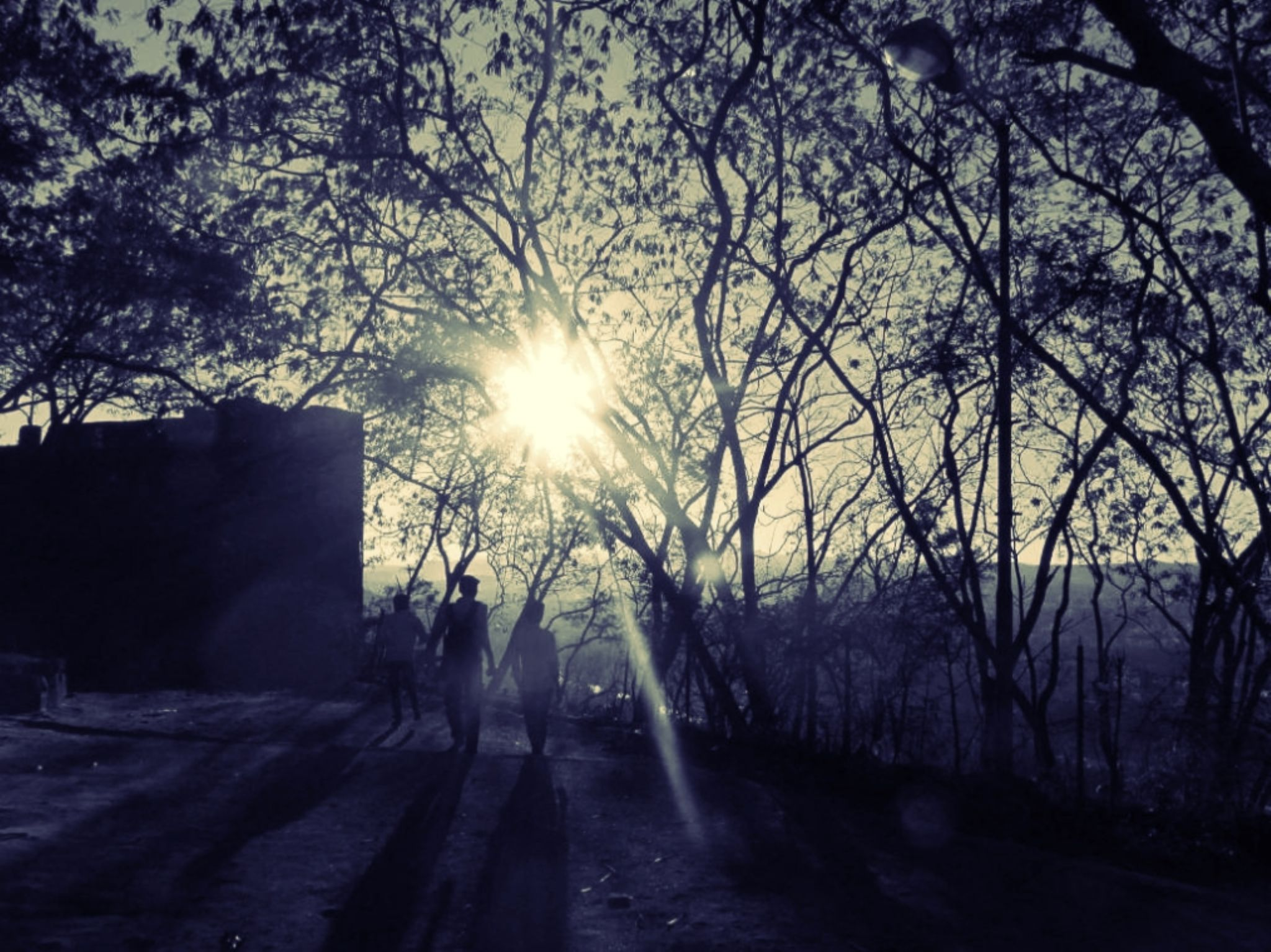 A Walk With My Friends... by Vinayak Patukale