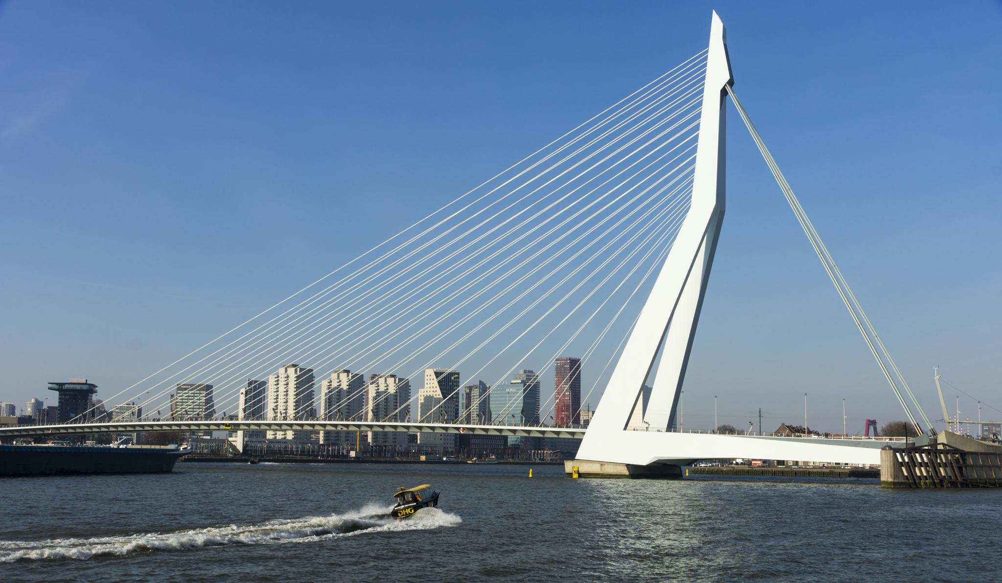 The Bridge by Rob van der Griend