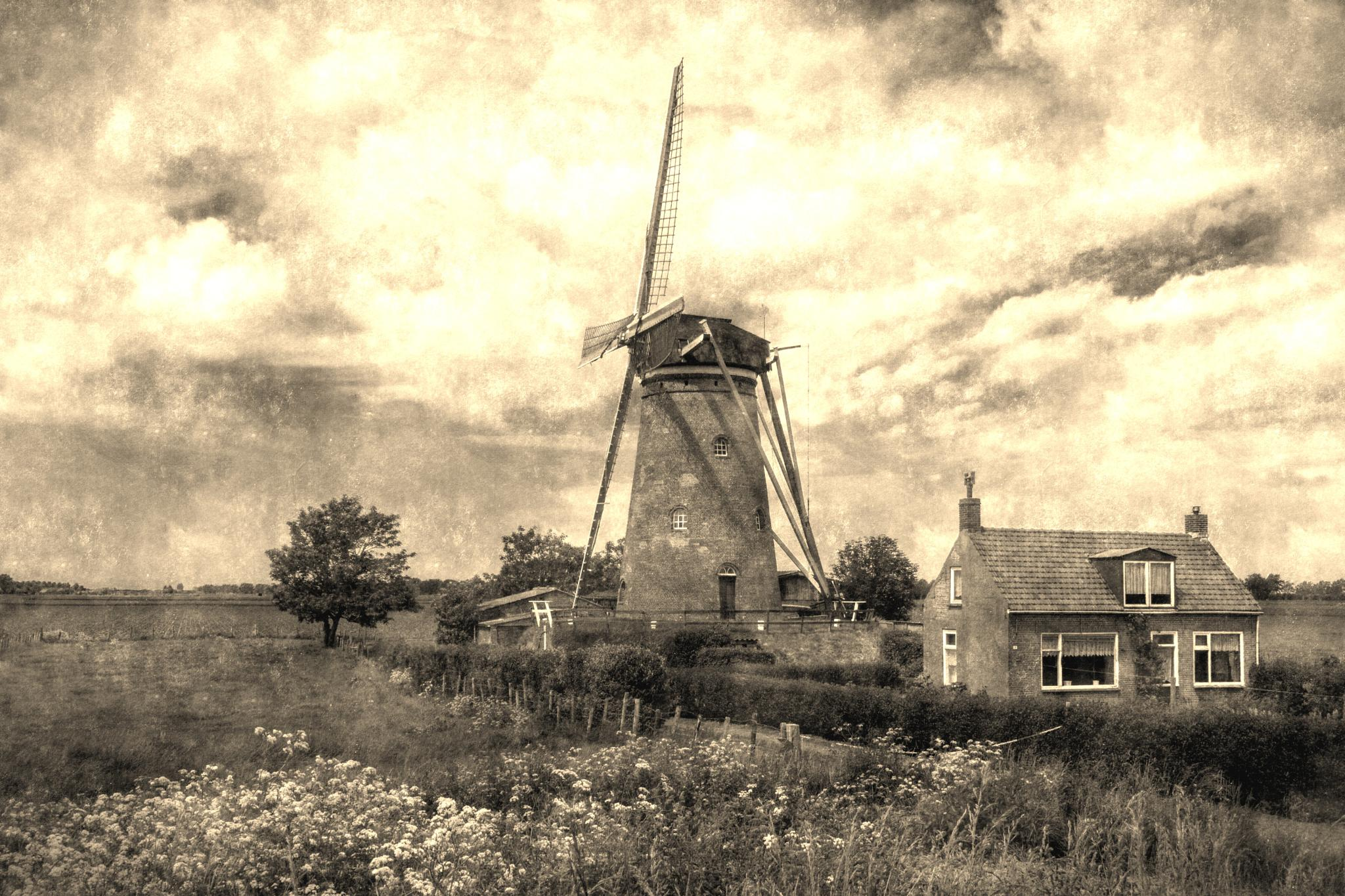Windmill by Rob van der Griend