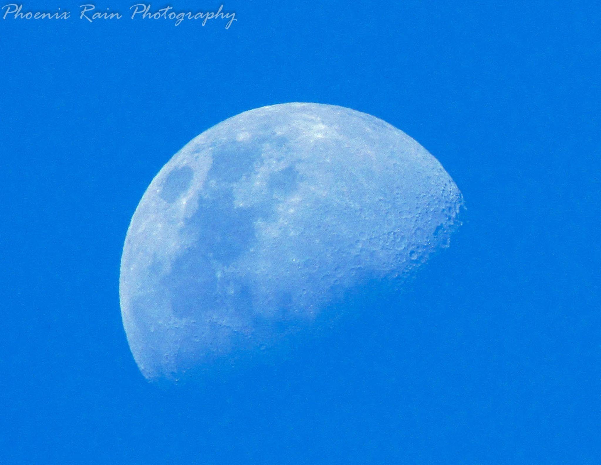 Day Moon, New Zealand by Phoenix Rain