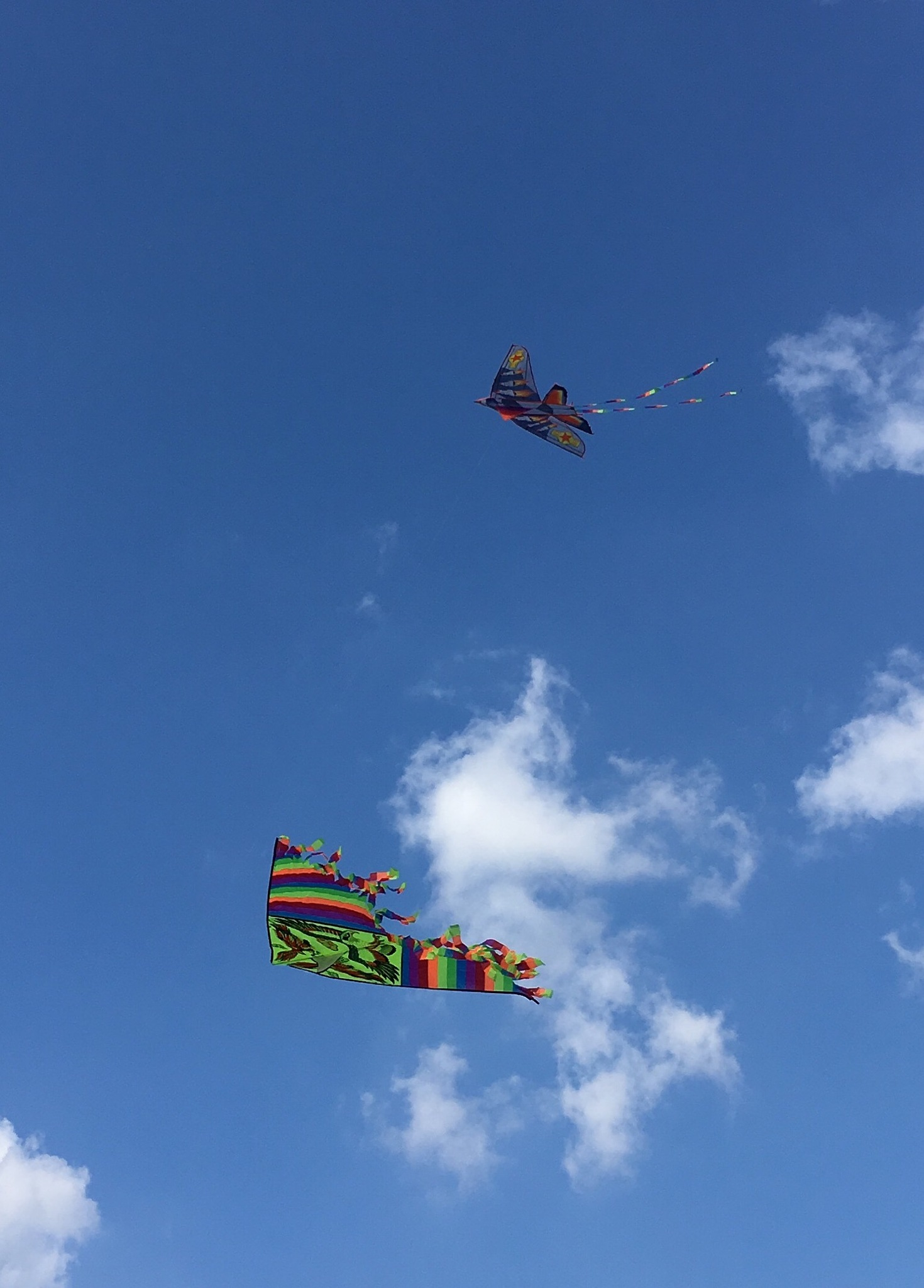 two kites in Moscow sky by Vladimir Pushkarev