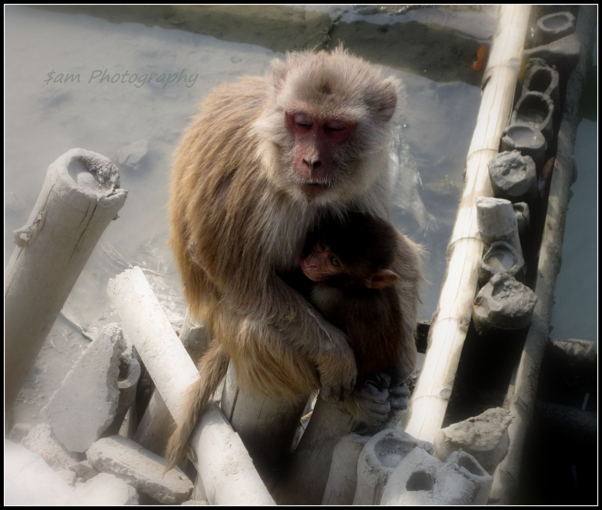 """best place in this world """"mother's lap"""" by soumyasam2"""