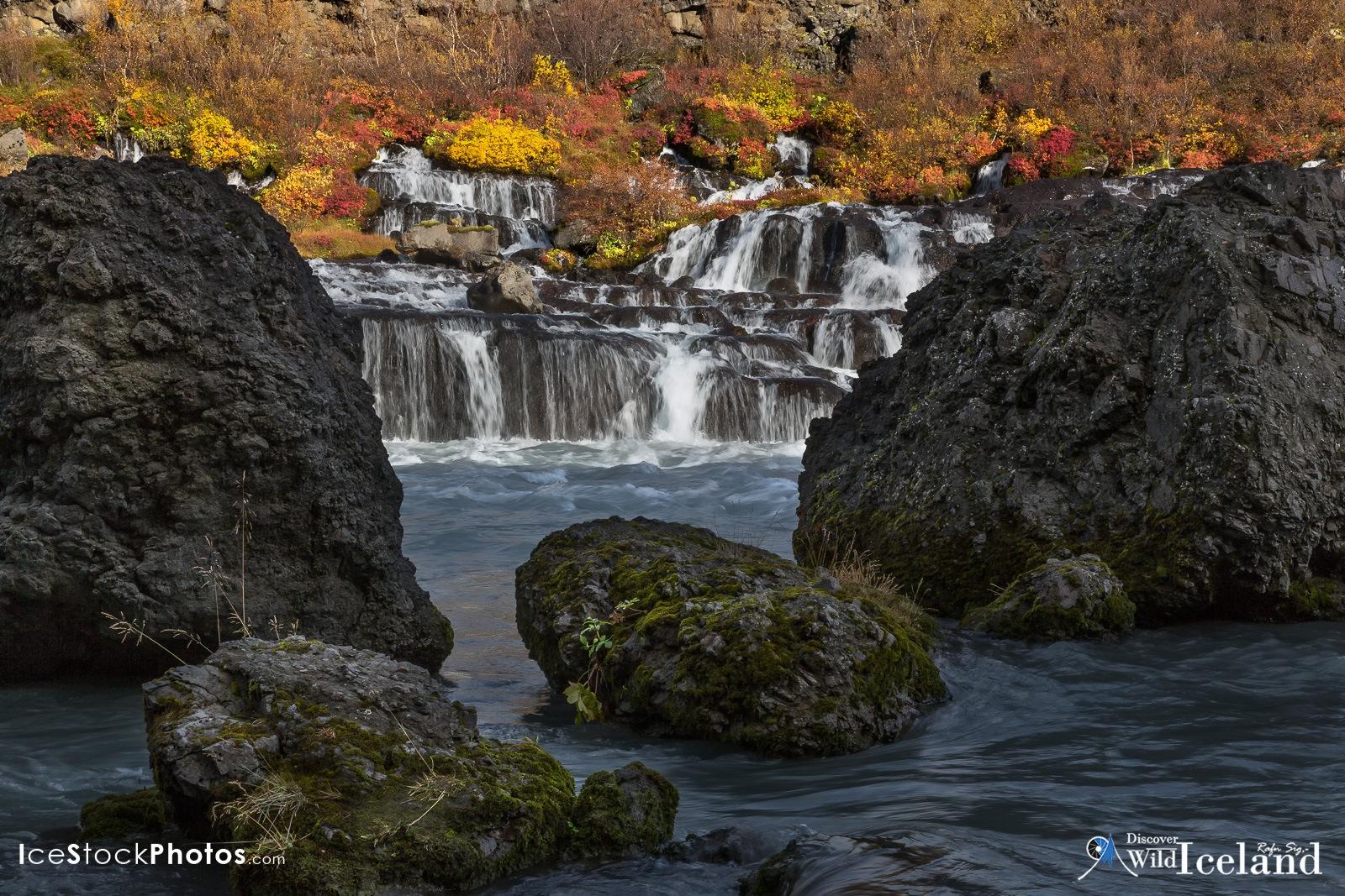 - Hraunfossar. The Colors of Autumn by Rafn Sig,-  @ Discover Wild Iceland.com