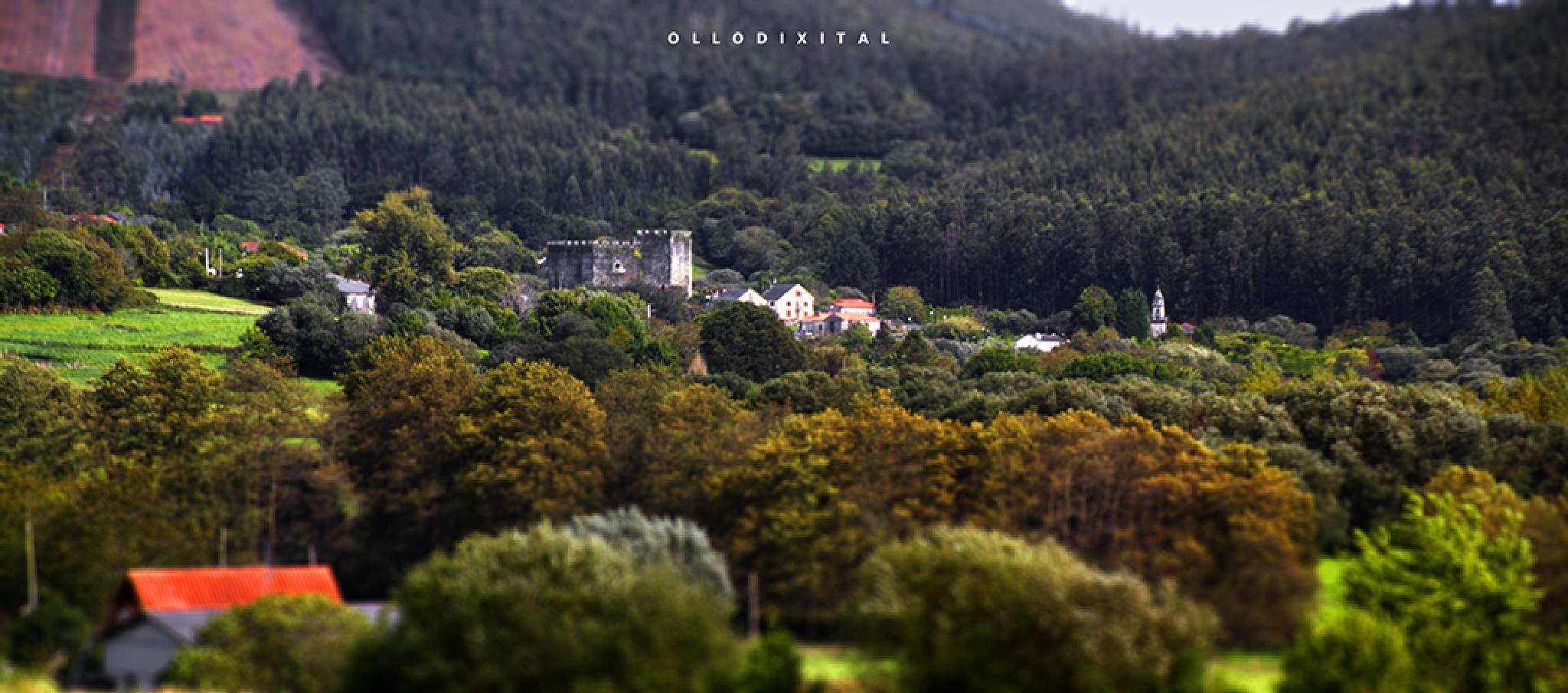 Moeche Castle by OlloDixital