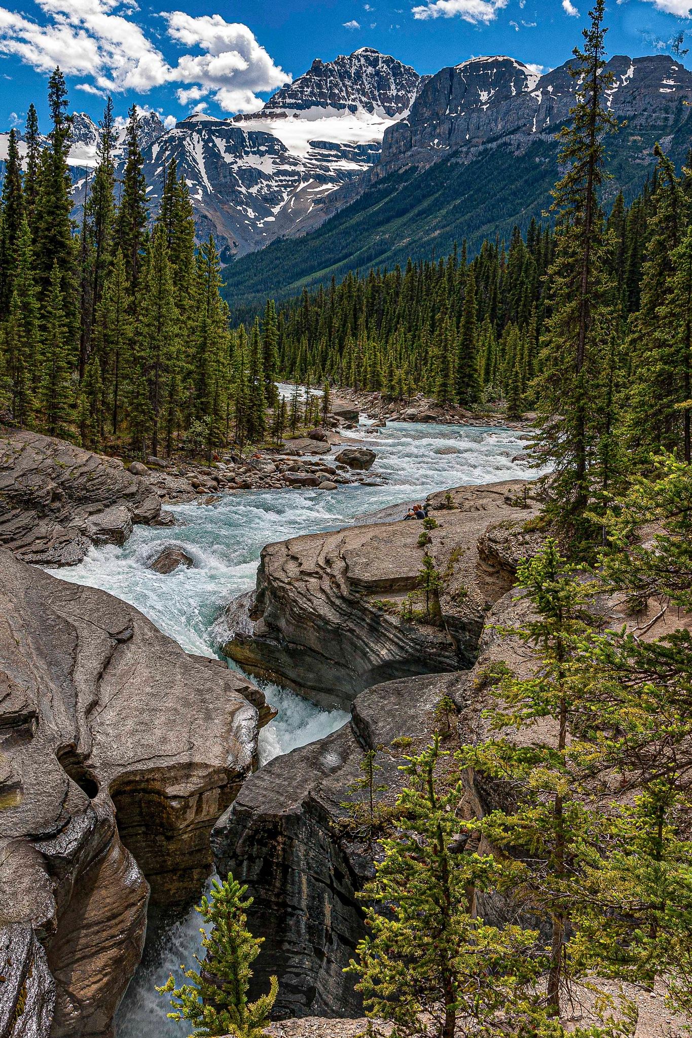 Athabasca River by Allen Weitzman