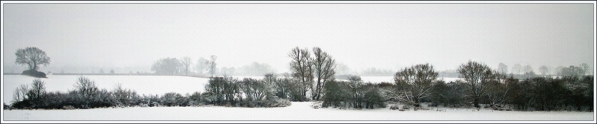 Wide snow by DavidNorfolk
