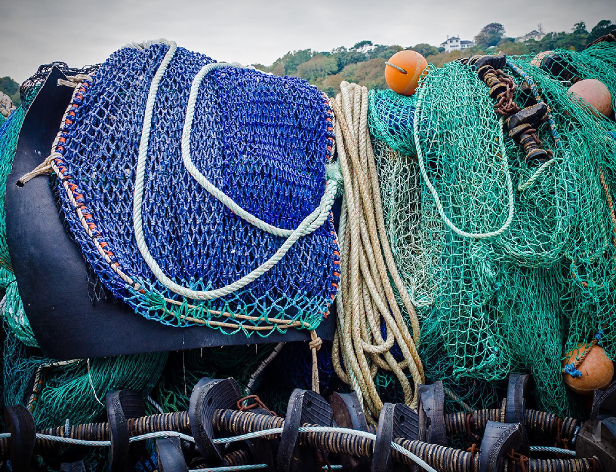 Netting by DavidNorfolk