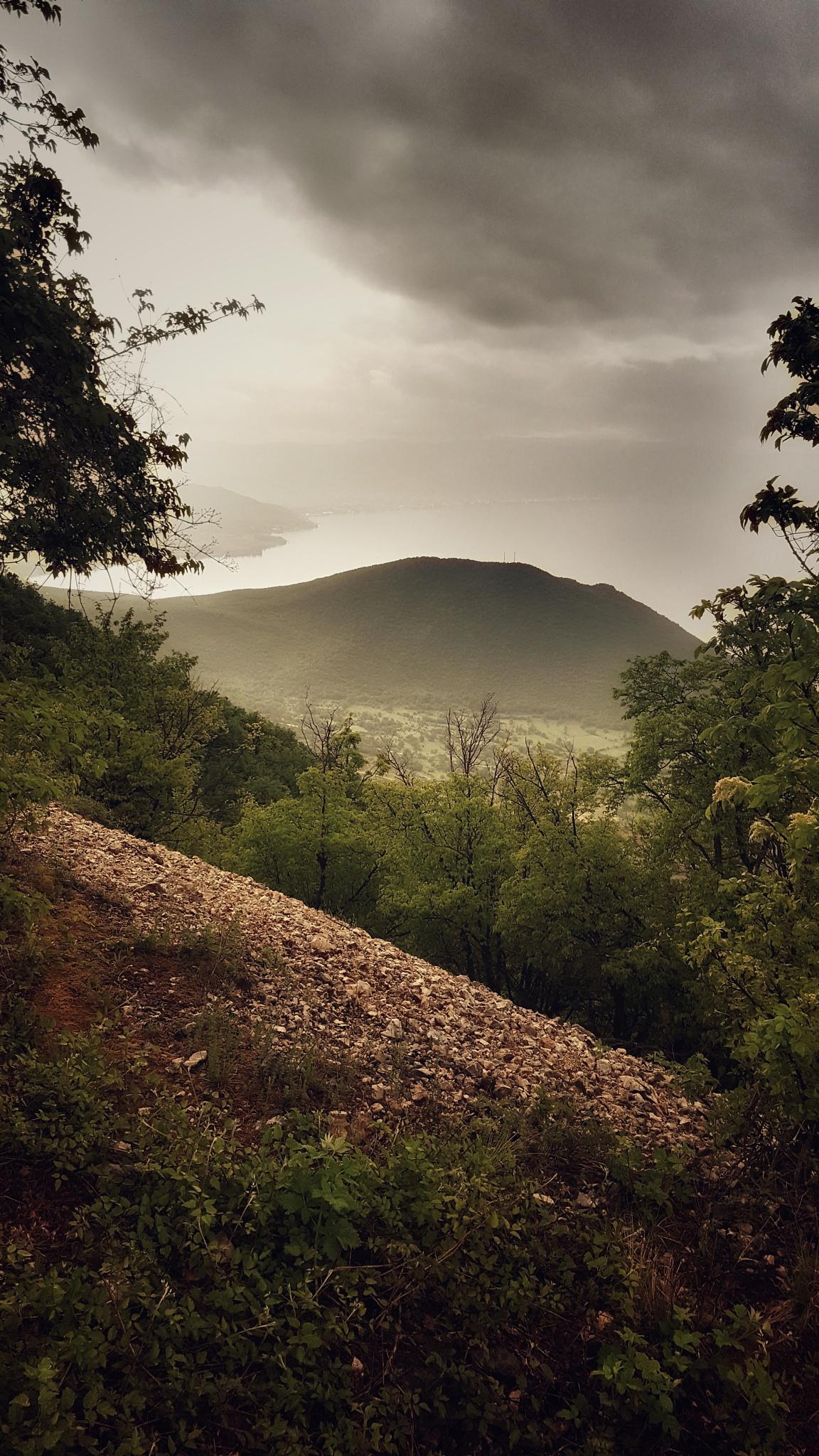 views by Aleczandra Lee