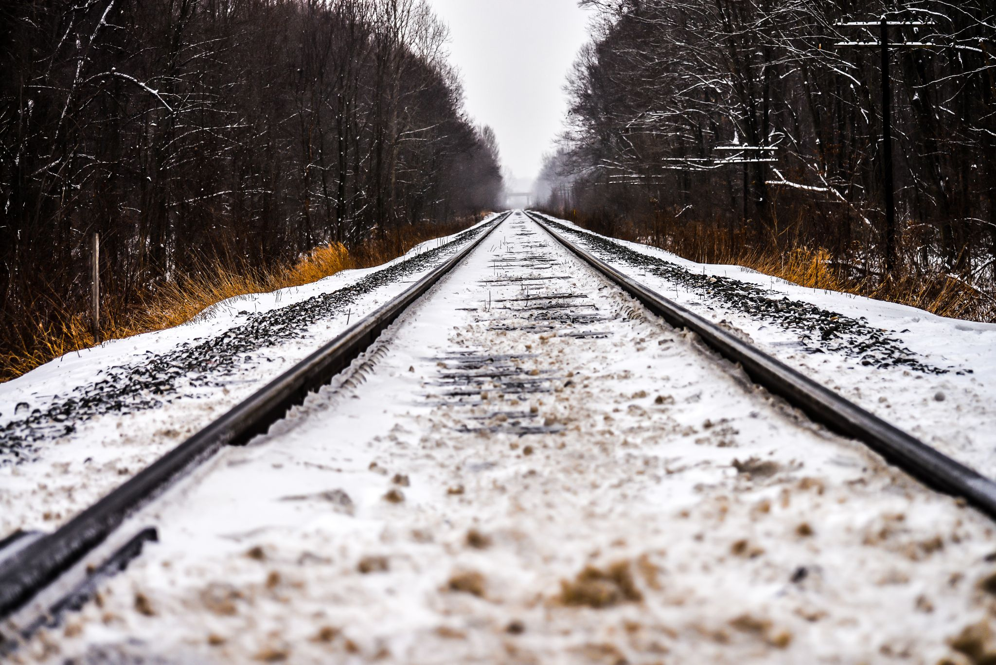 Tracks by 2111photography