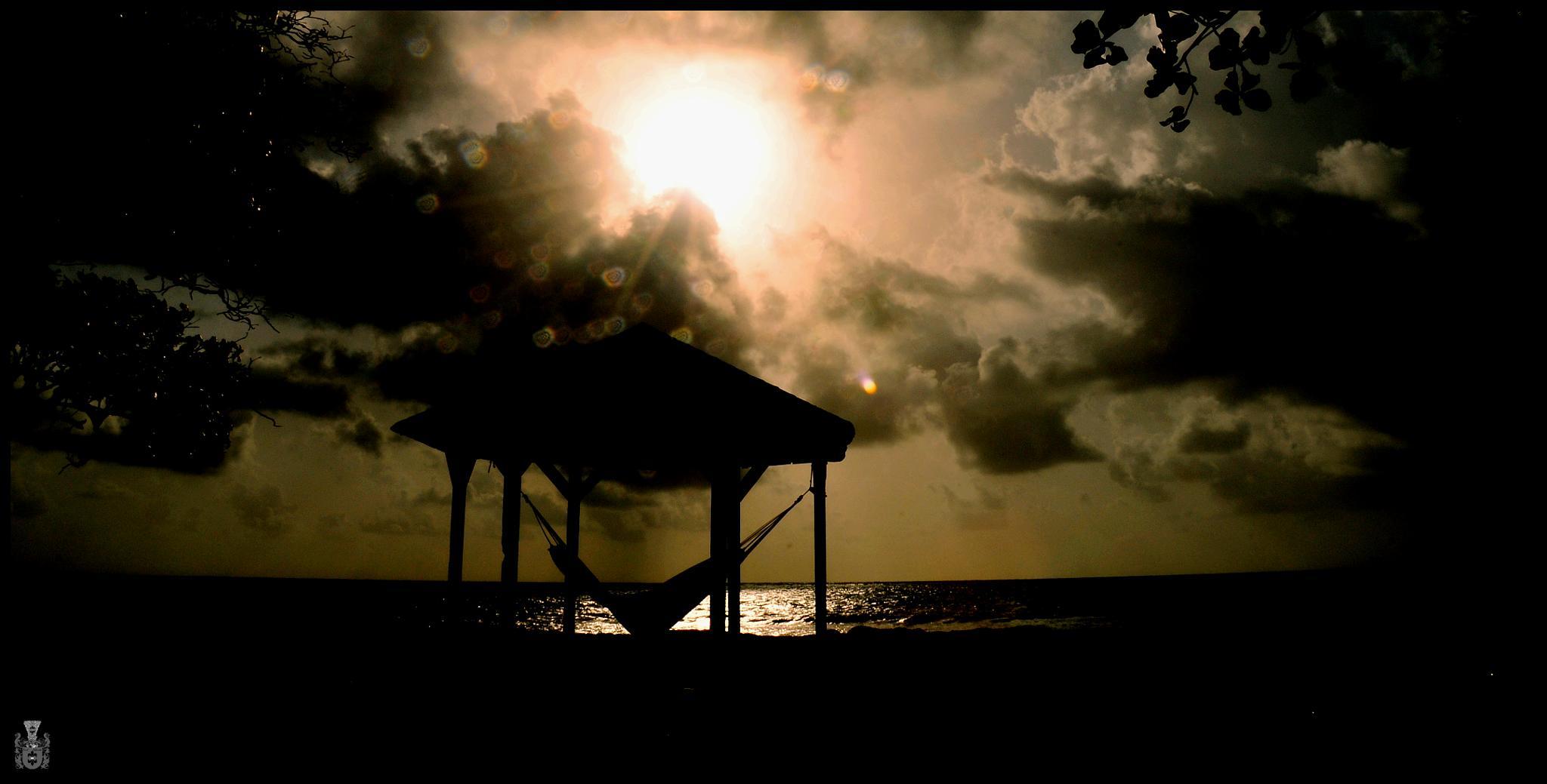 plage de Guadeloupe  1 by Pawel Reklewski