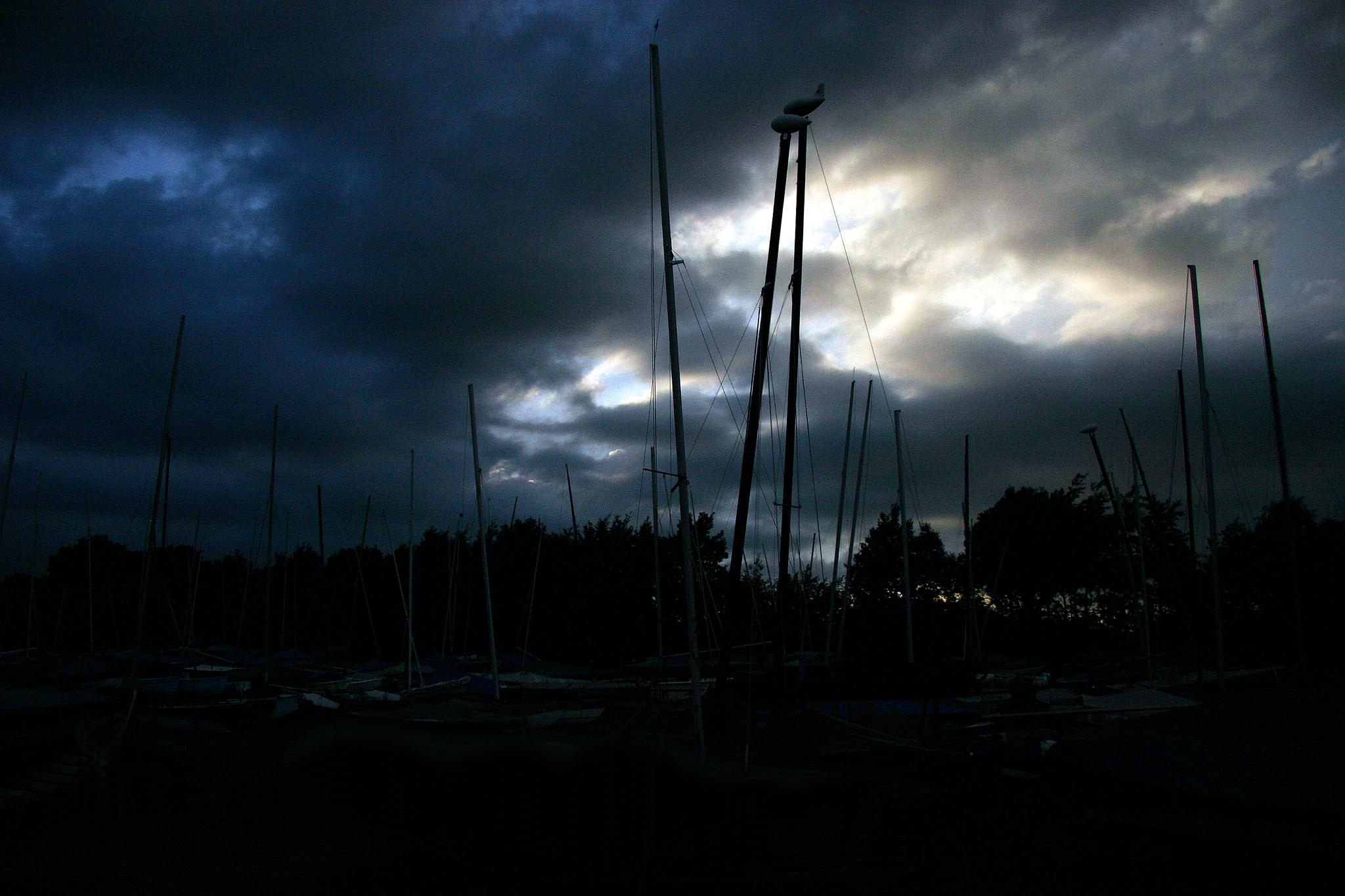 Masts at Bewl Resevoir  by WhiteArtPhotography