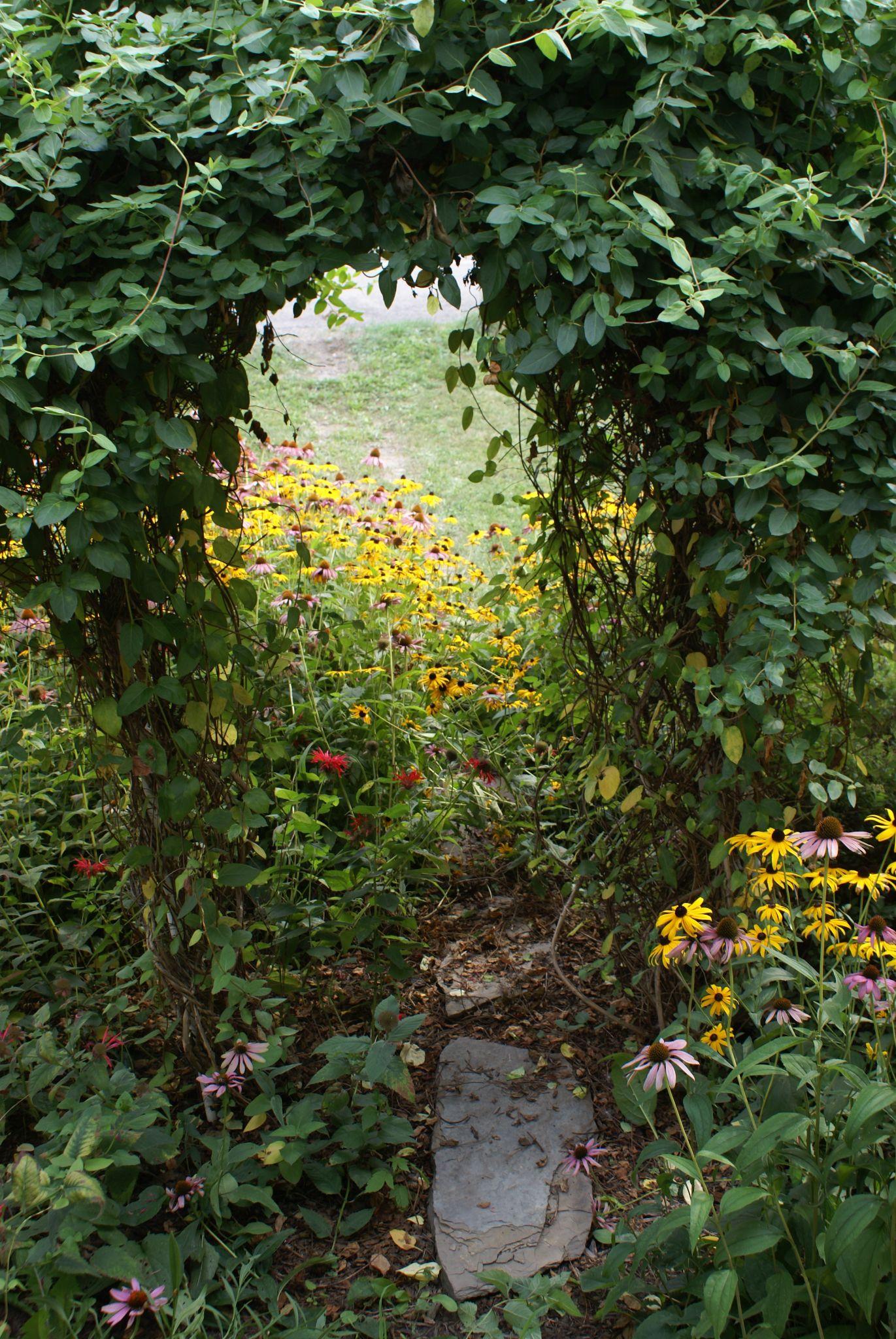 Secret Garden by june.a.jackson