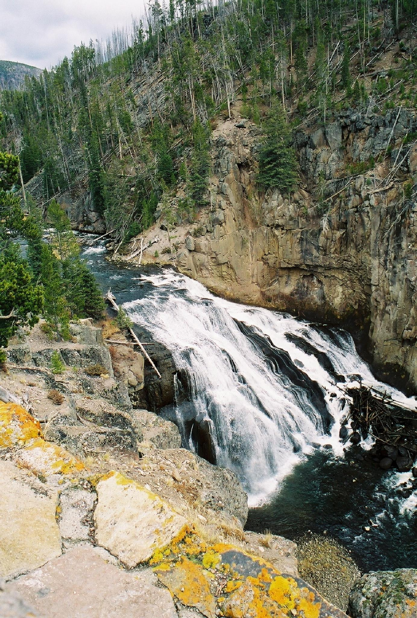 Waterfall in Yellowstone Wy. by june.a.jackson