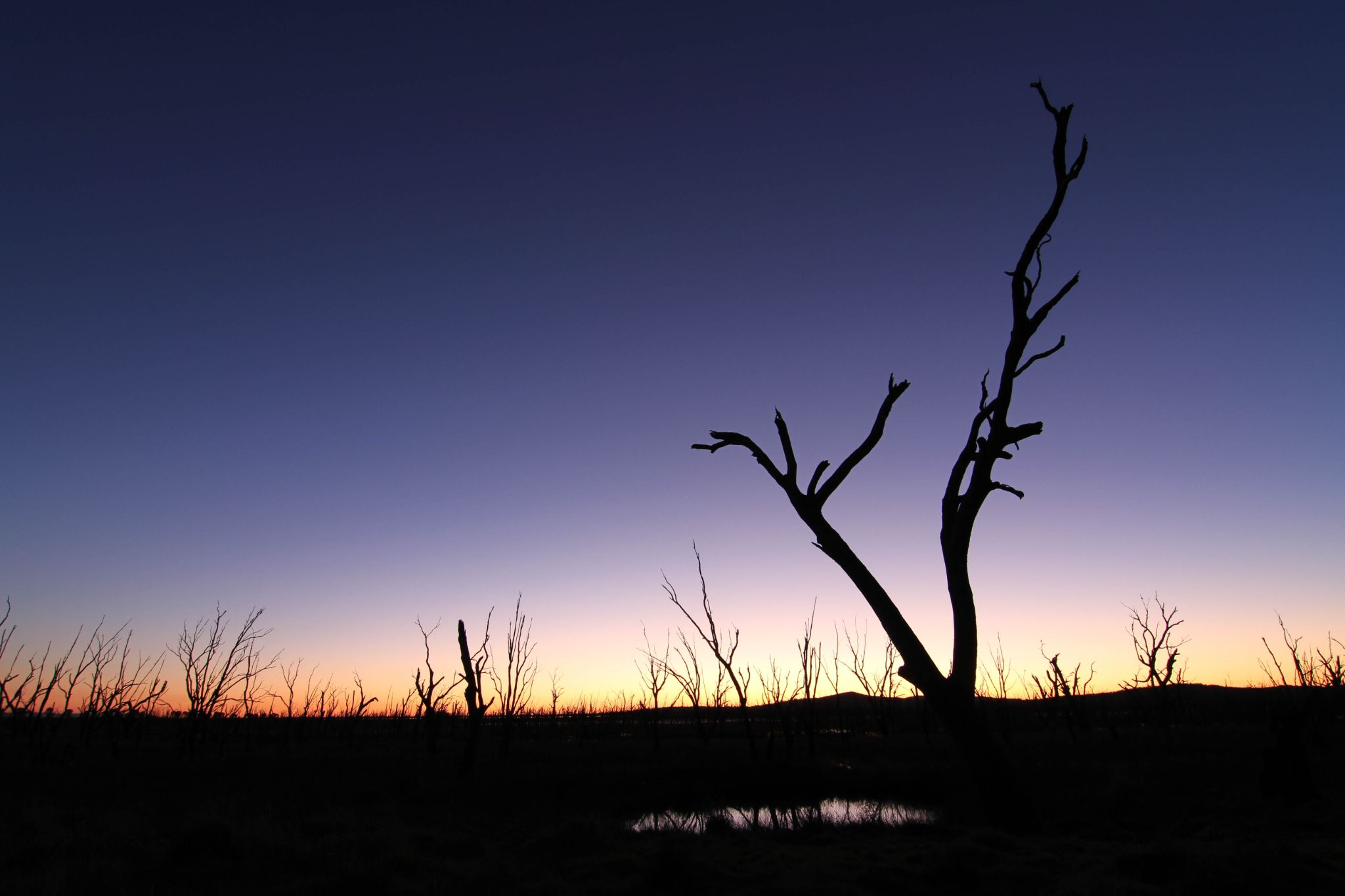 Sunset by Jayson Pratt