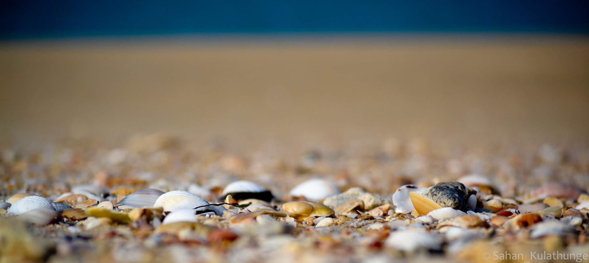 Beach by Sahan Kulathunge