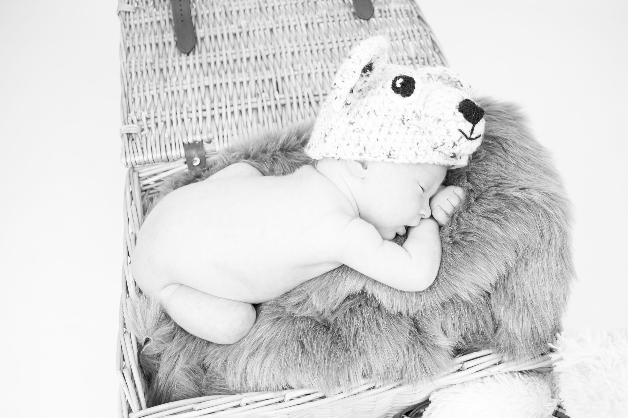 Teddy Bears picnic by Emma Eirene Photography