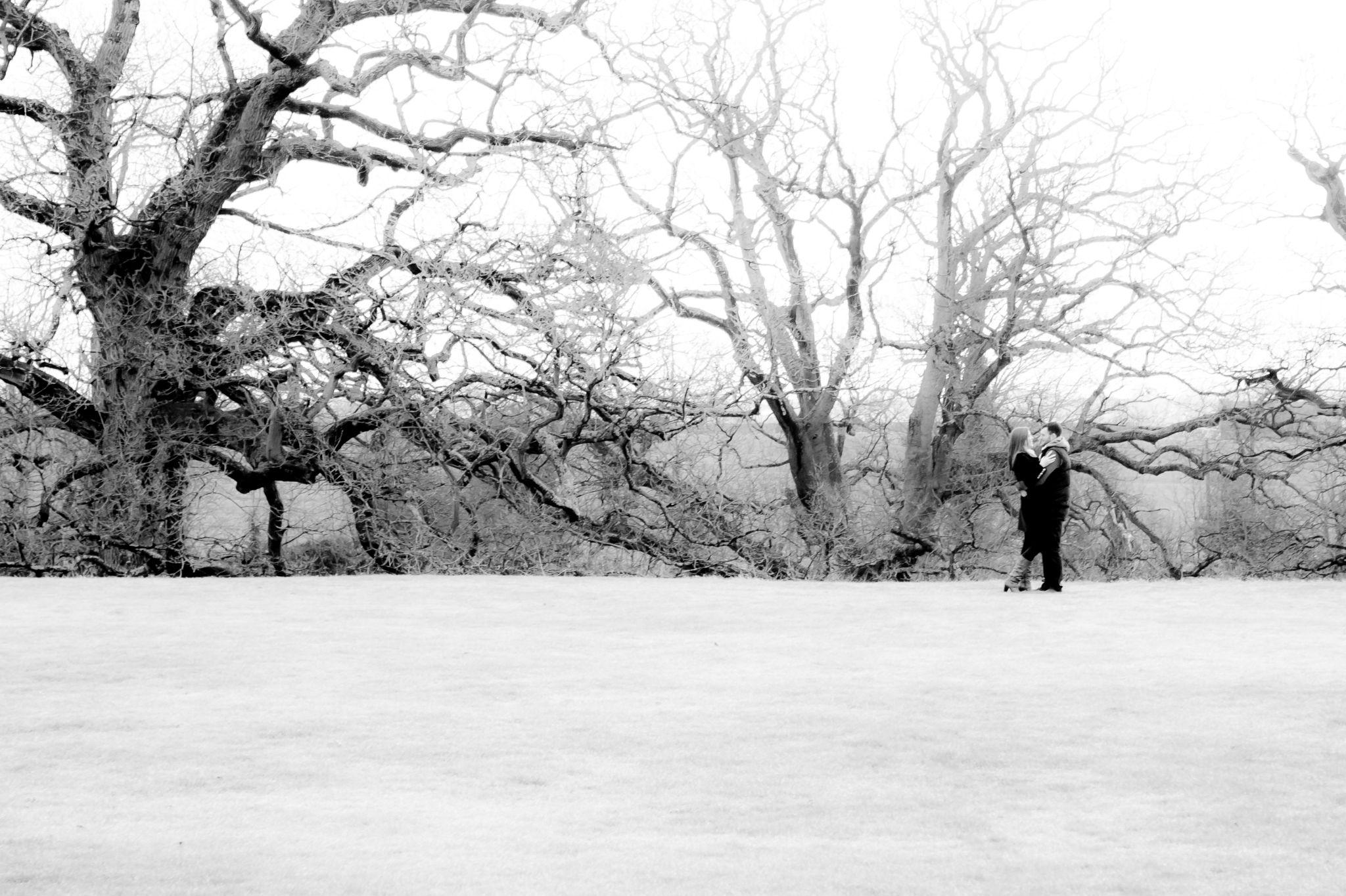 Winter morning by Emma Eirene Photography