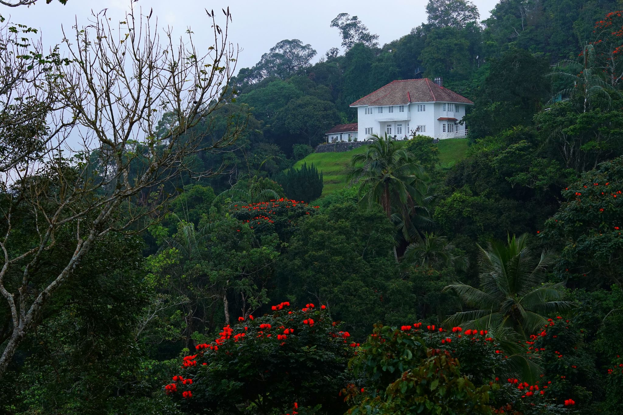 Penang Hill by CharlesOoi6