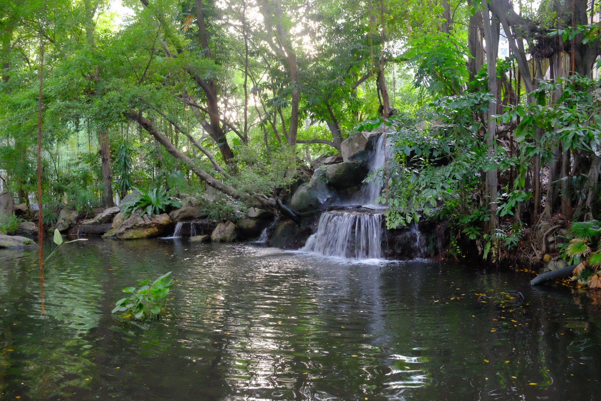 Landscaped waterfall at Swissotel Nai Lert Park, Bangkok by Victor Kam