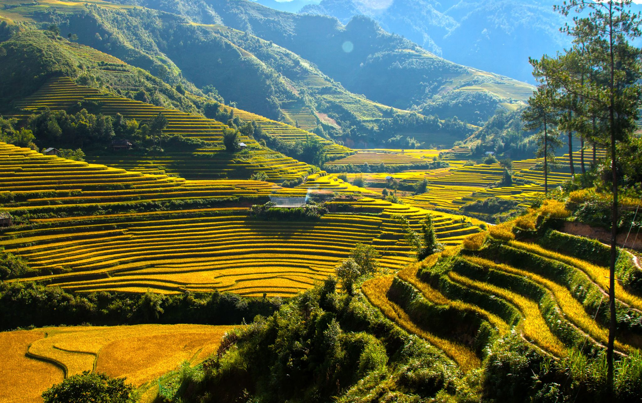 Some where in Mu Cang Chai by AmateurPic