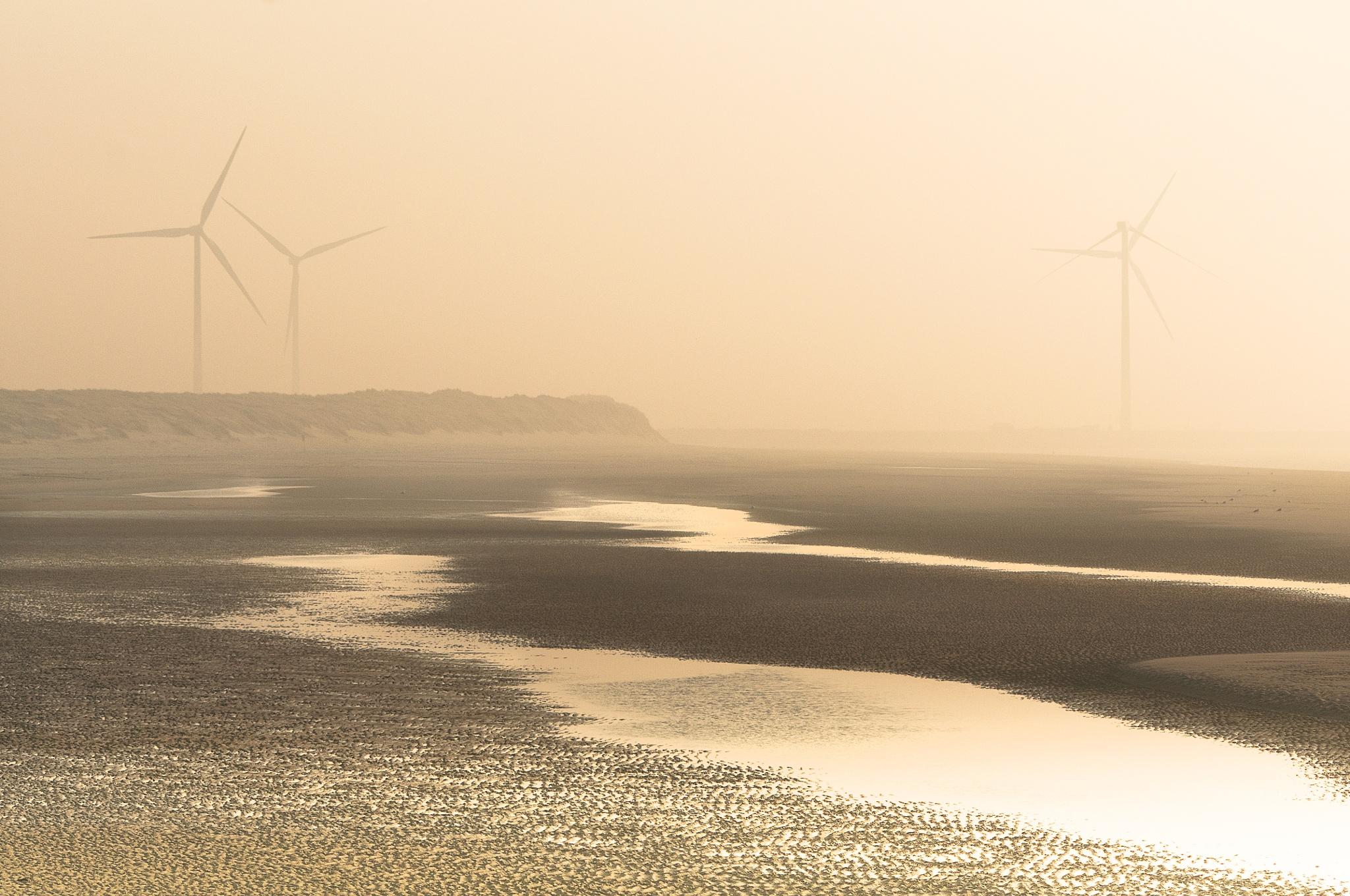 Foggy day at the beach http://sonjapixels.werkaandemuur.nl by Sonja Pixels
