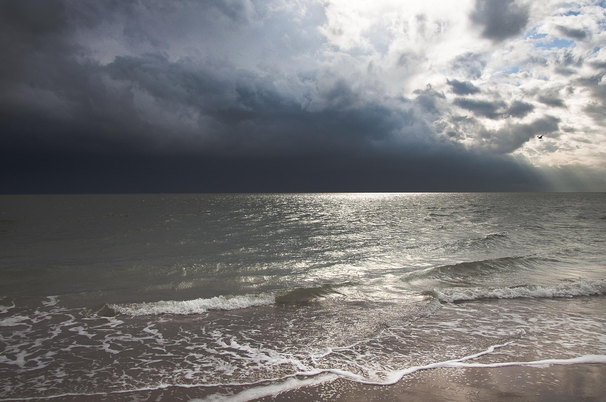 November Storm by Sonja Pixels