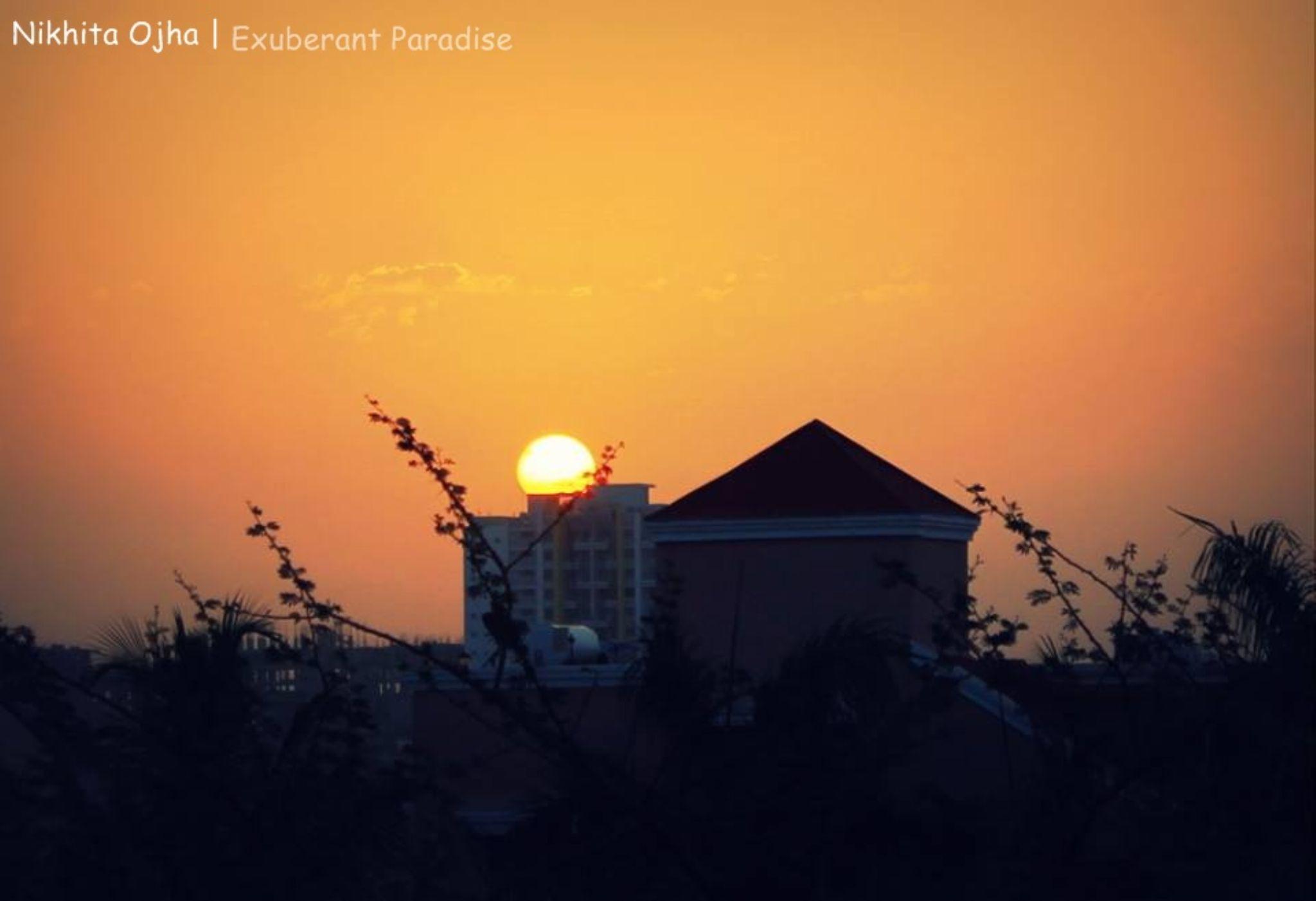 Sunrise  by Exuberant Paradise Photography