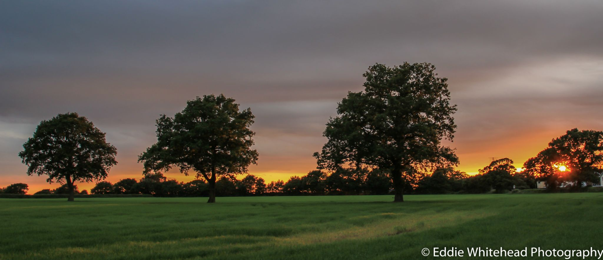 View opposite my house in Knutsford by eddiewhiteheadphotography