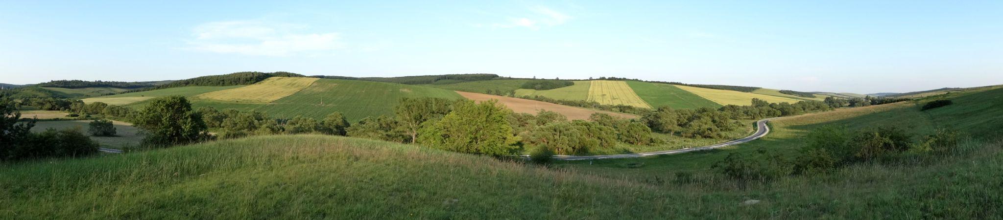 Landscape by adrienne.ludasi