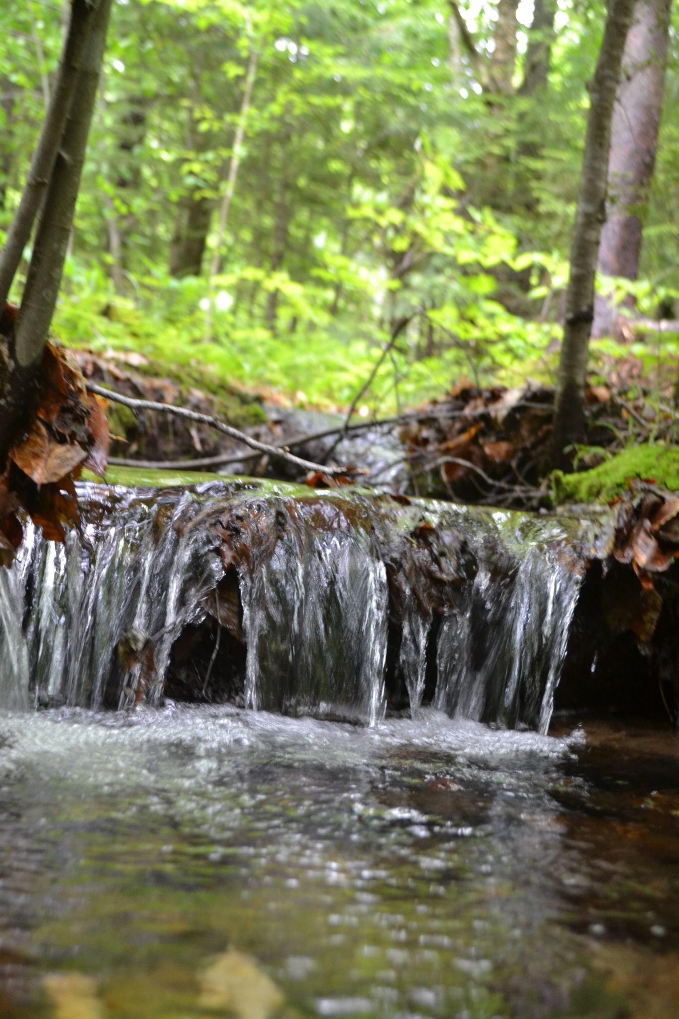 Little Creek by Hidden_Paradise_Photography