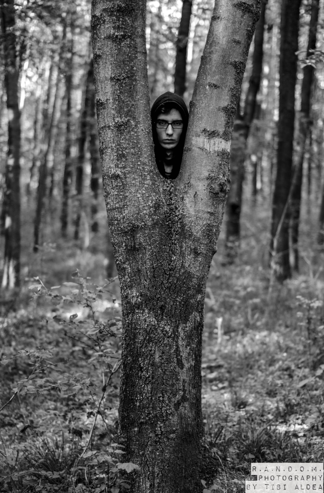 forest guy by tibi.aldea