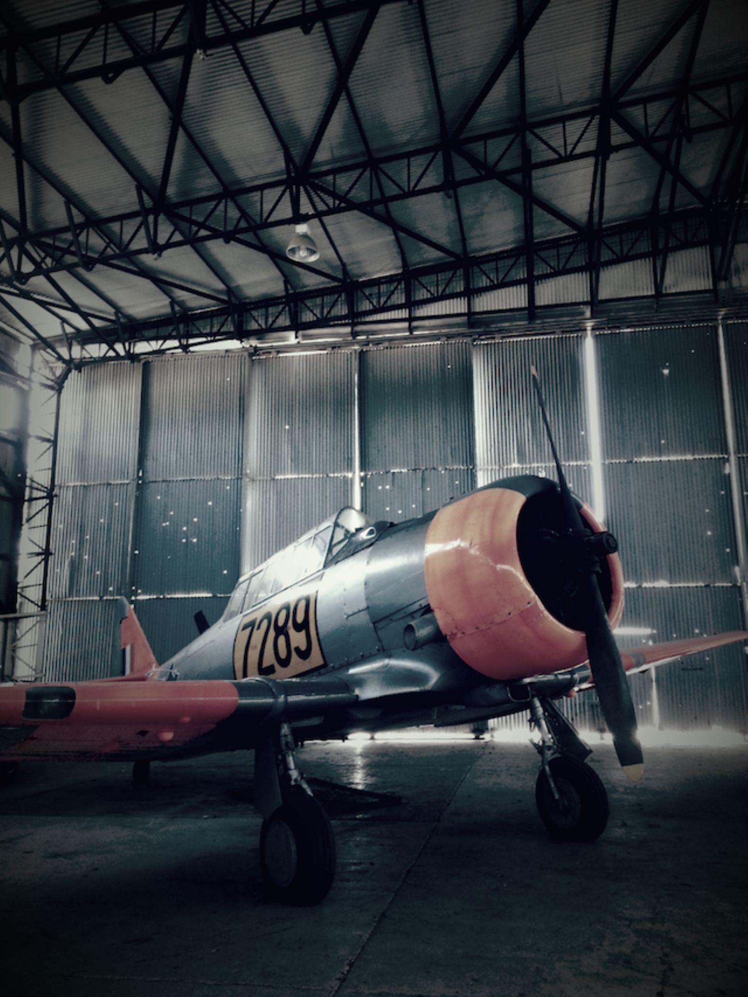 Mustang by kana.chan2