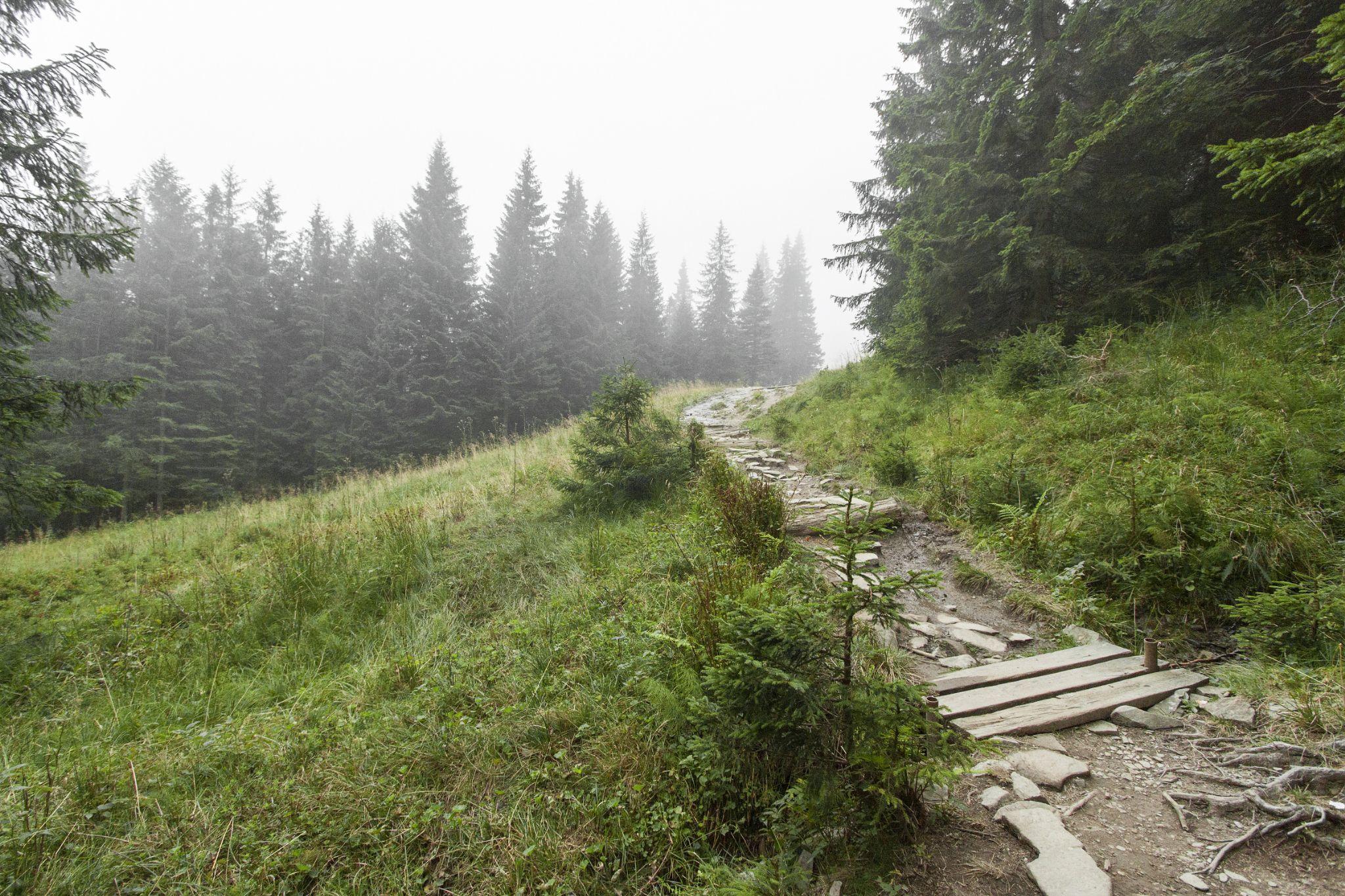 beskids mountains, poland by grzegorzbuchaczart